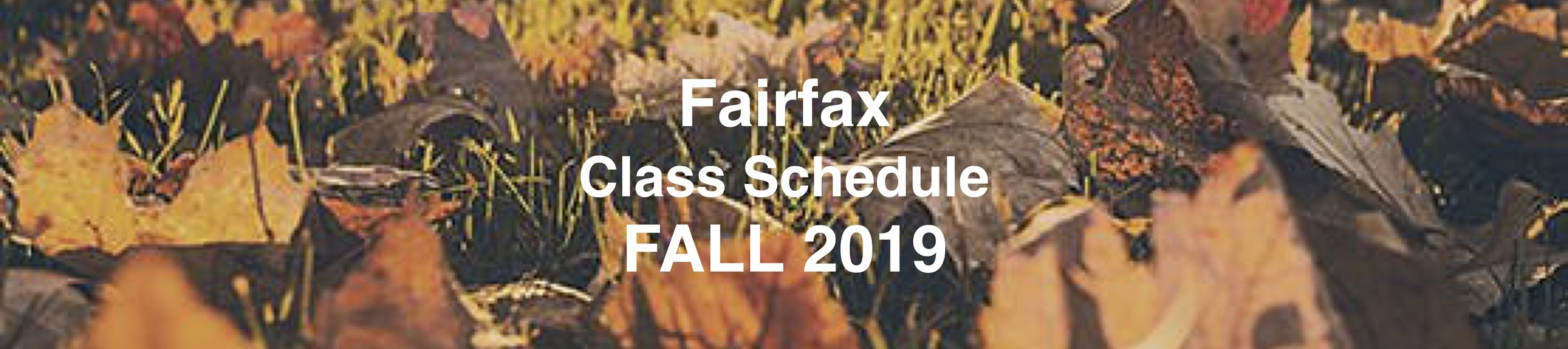 Sched Page Image Doc FFX Fall.jpg