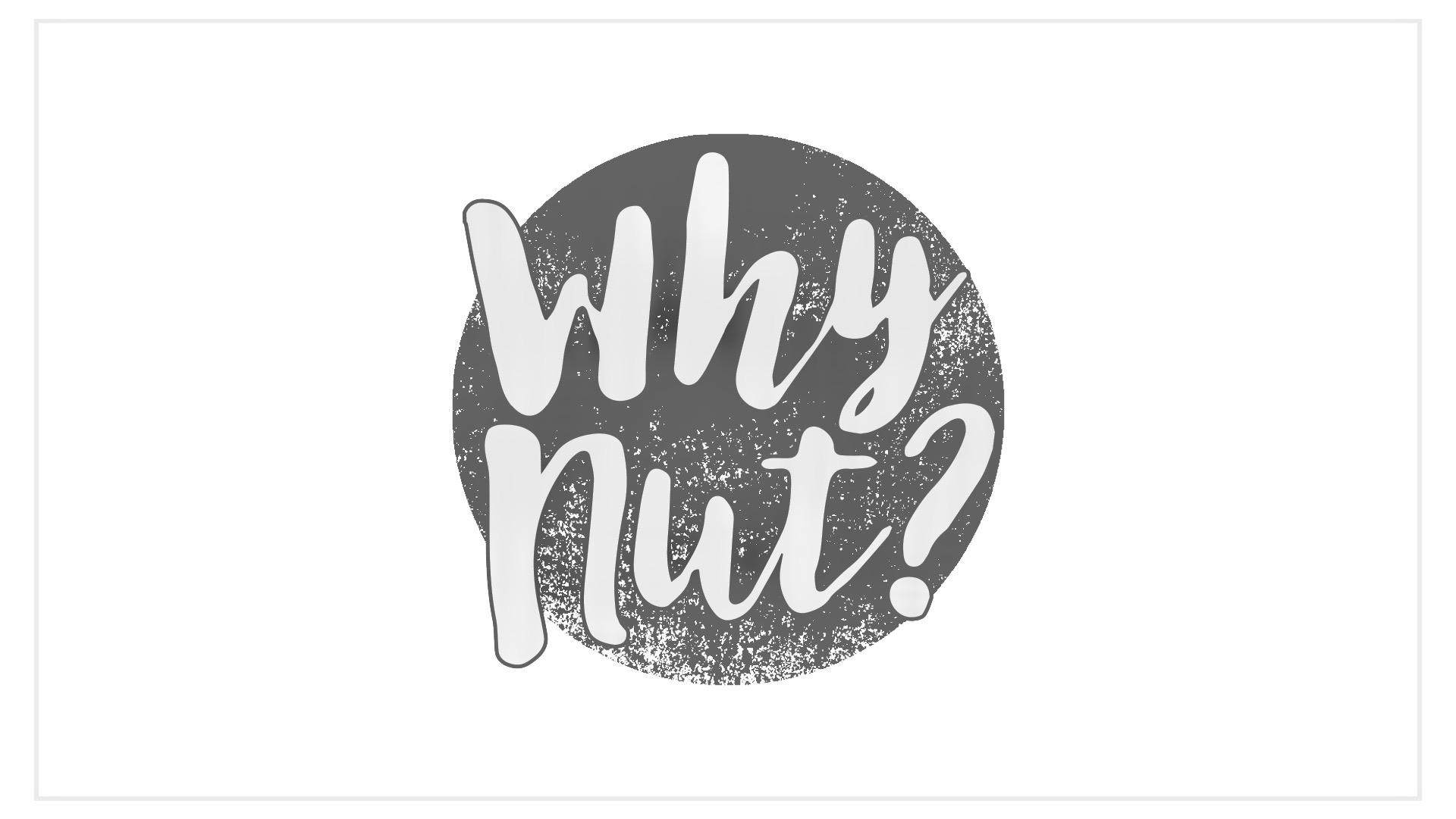 WhyNut? Website design