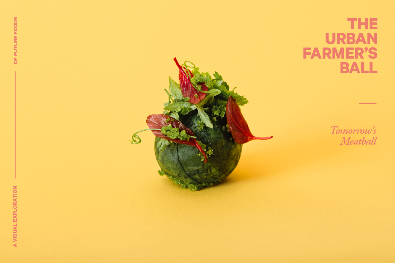 tomorrows-meatball_web_02-farmer_photo_lukas-renlund.png
