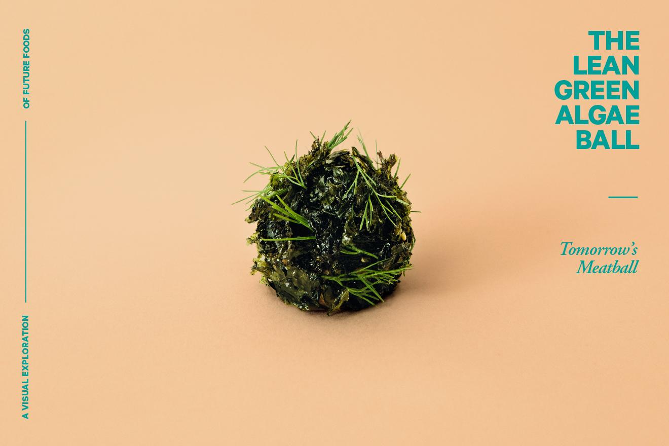 tomorrows-meatball_web_06-algae_photo_lukas-renlund.png