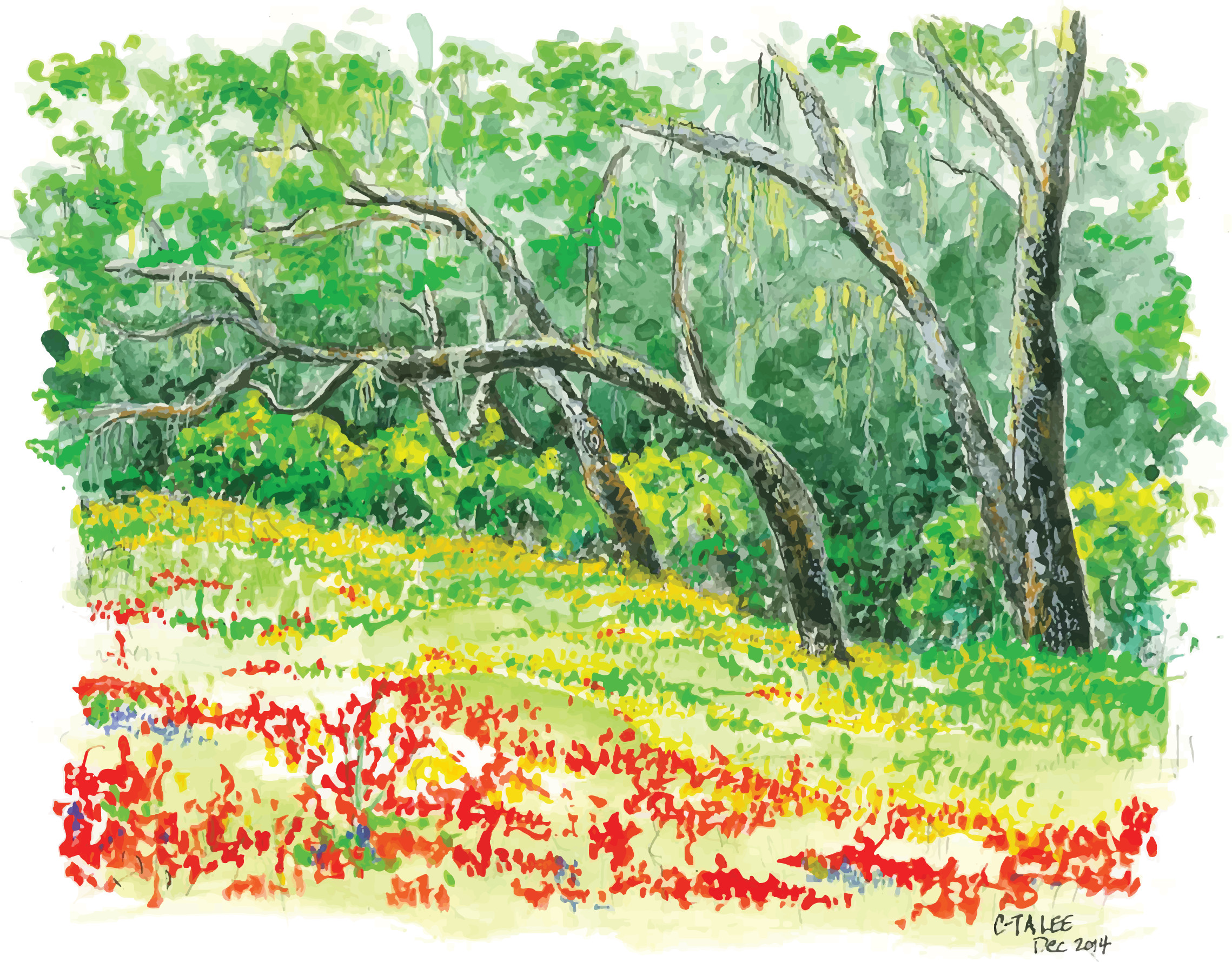 Oaks and flowers