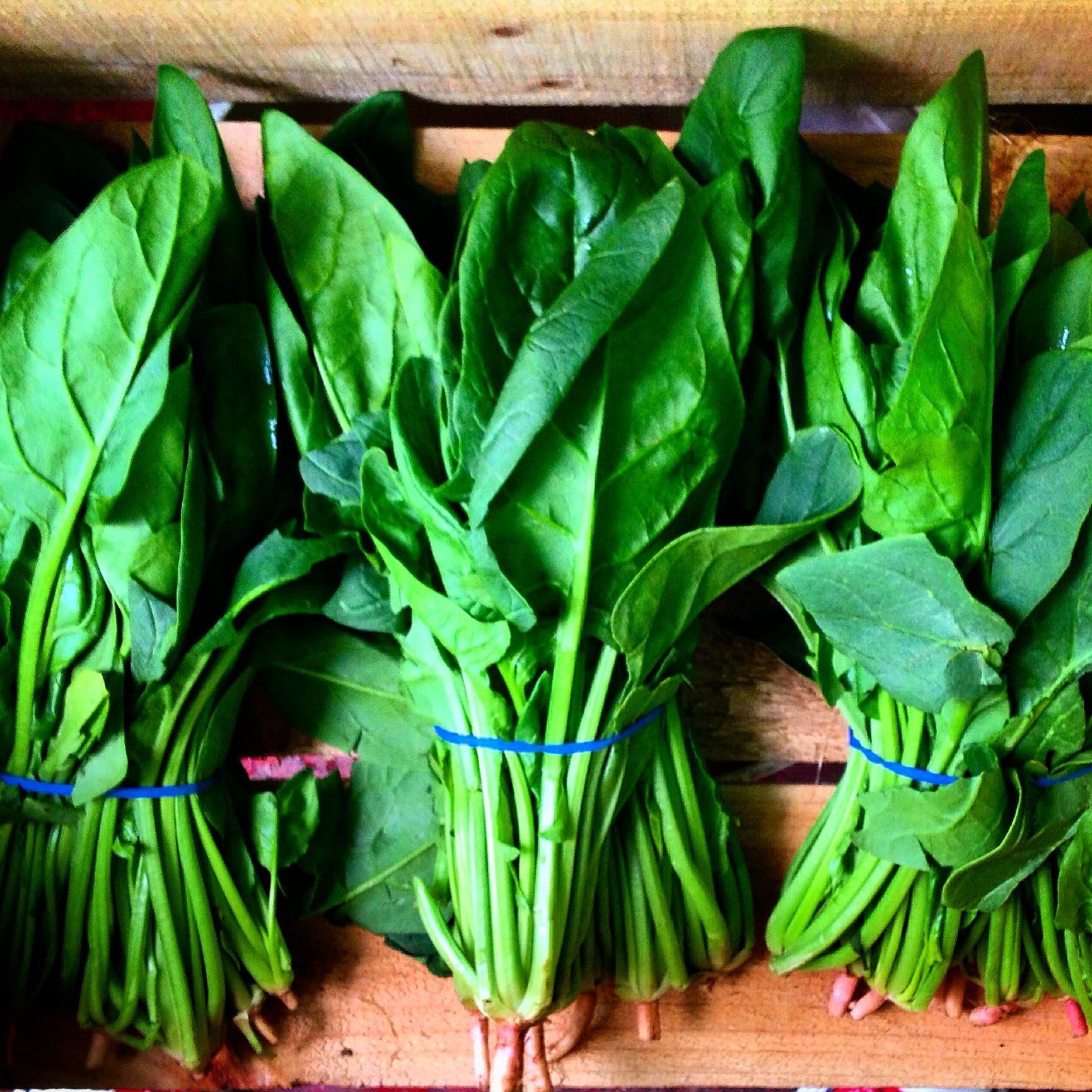 Local English Spinach