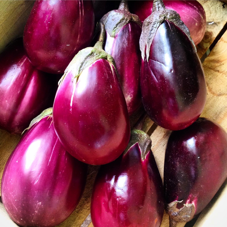 Italian Eggplants