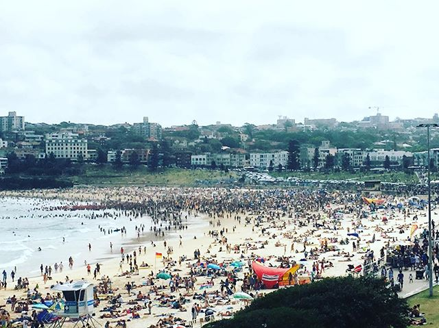 BONDI BEACH NEW YEARS DAY. No that's not a swarm of bees, it's a throng of (a couple hundred thousand) people. #beachbummum #beach #summer  #lovesummer #funplayconnection  #nature  #staraniseorganic #ocean  #beachlife #thisbeachlife  #outdoors #ocean #sunshine #nature #staraniseorganic #summerholidays  #vitaminD #rest