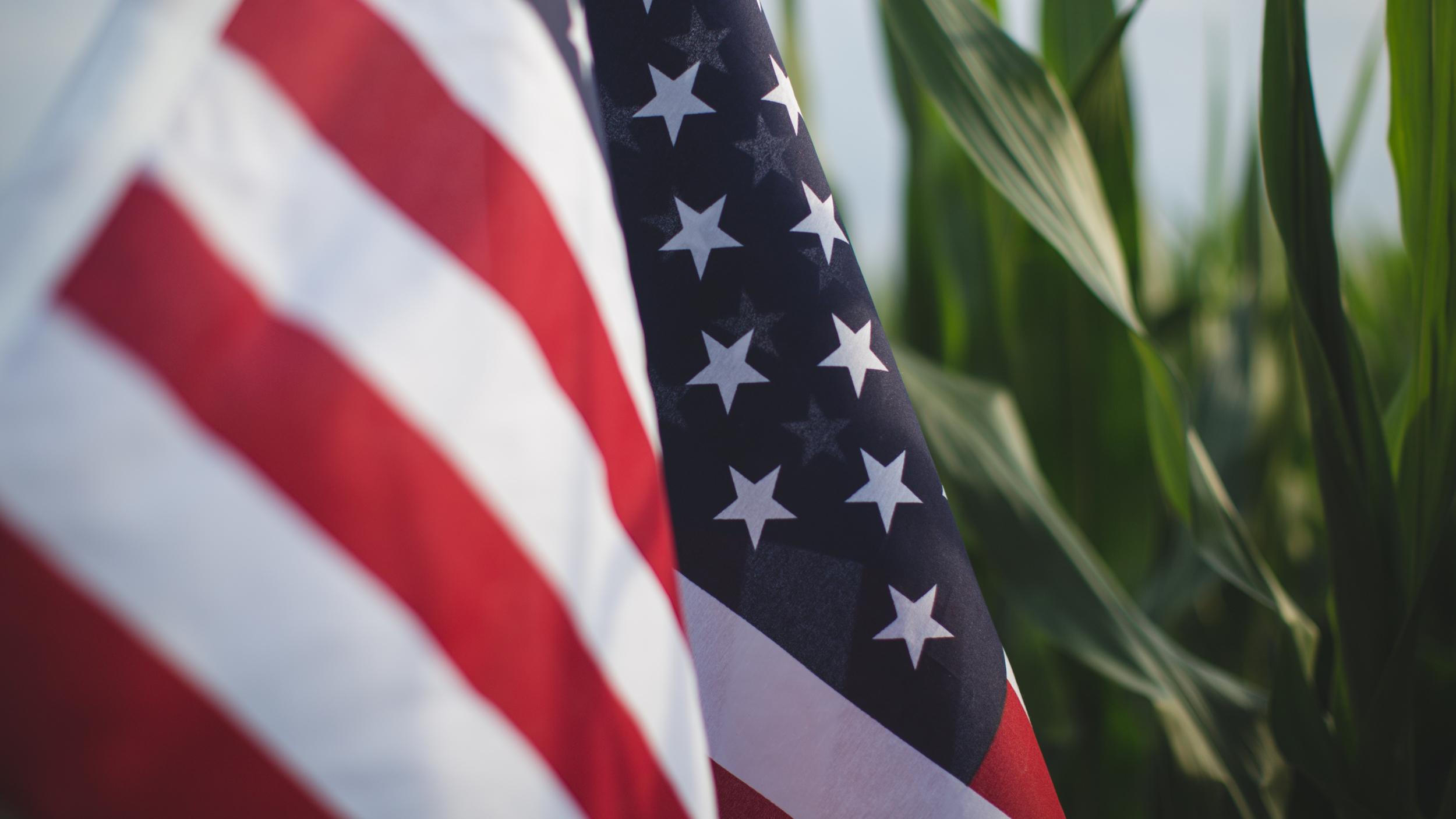 flag-1-34.jpg