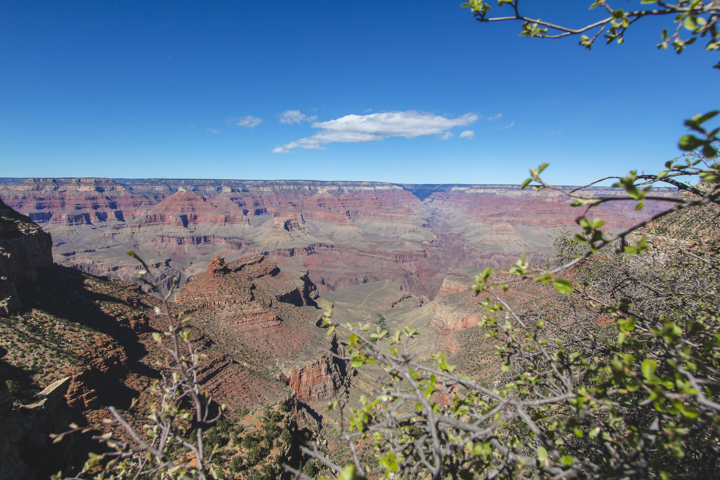 Grand_Canyon_Jon_Courville