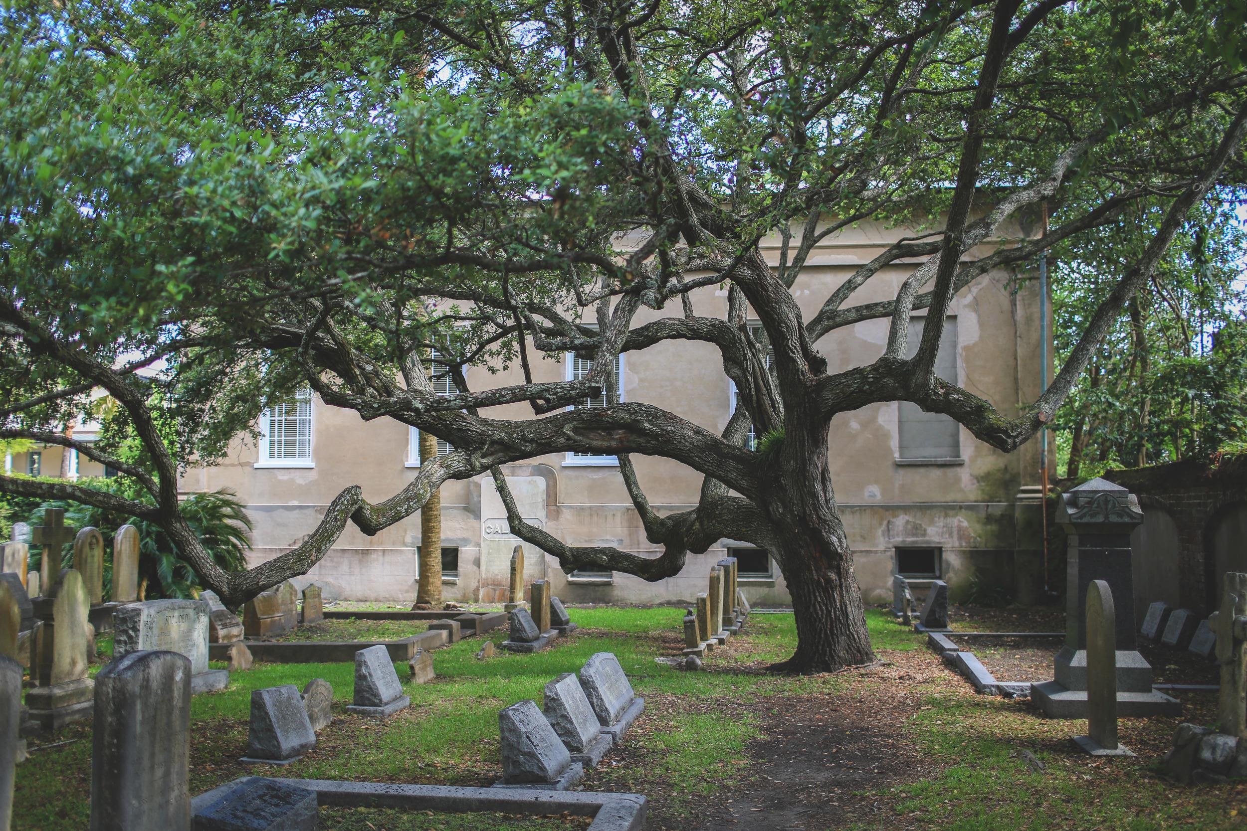 Charleston, SC, Jon Courville Photography