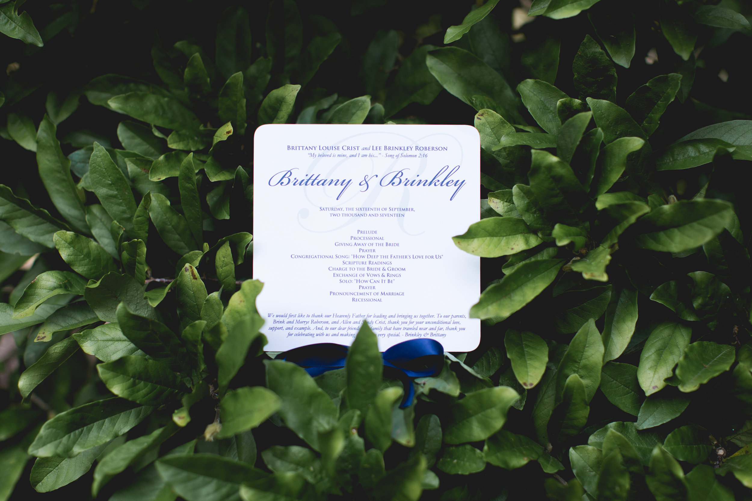 Copy of Wedding Programs as Fans