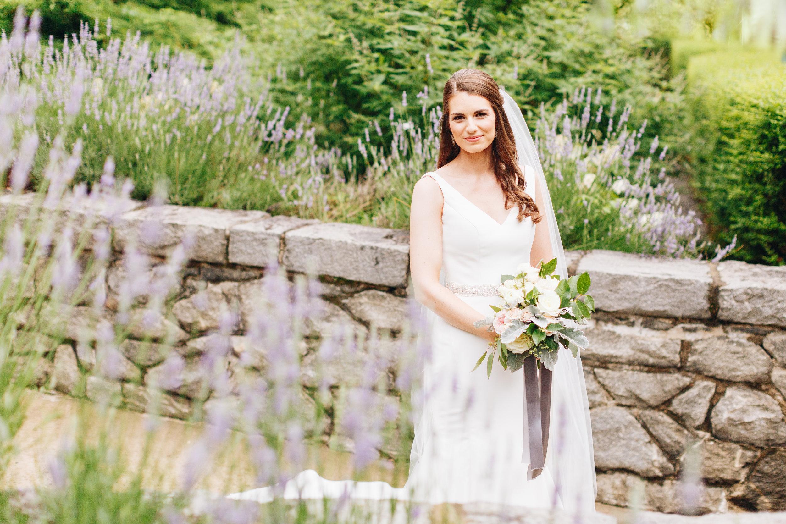 lavender bridal portraits