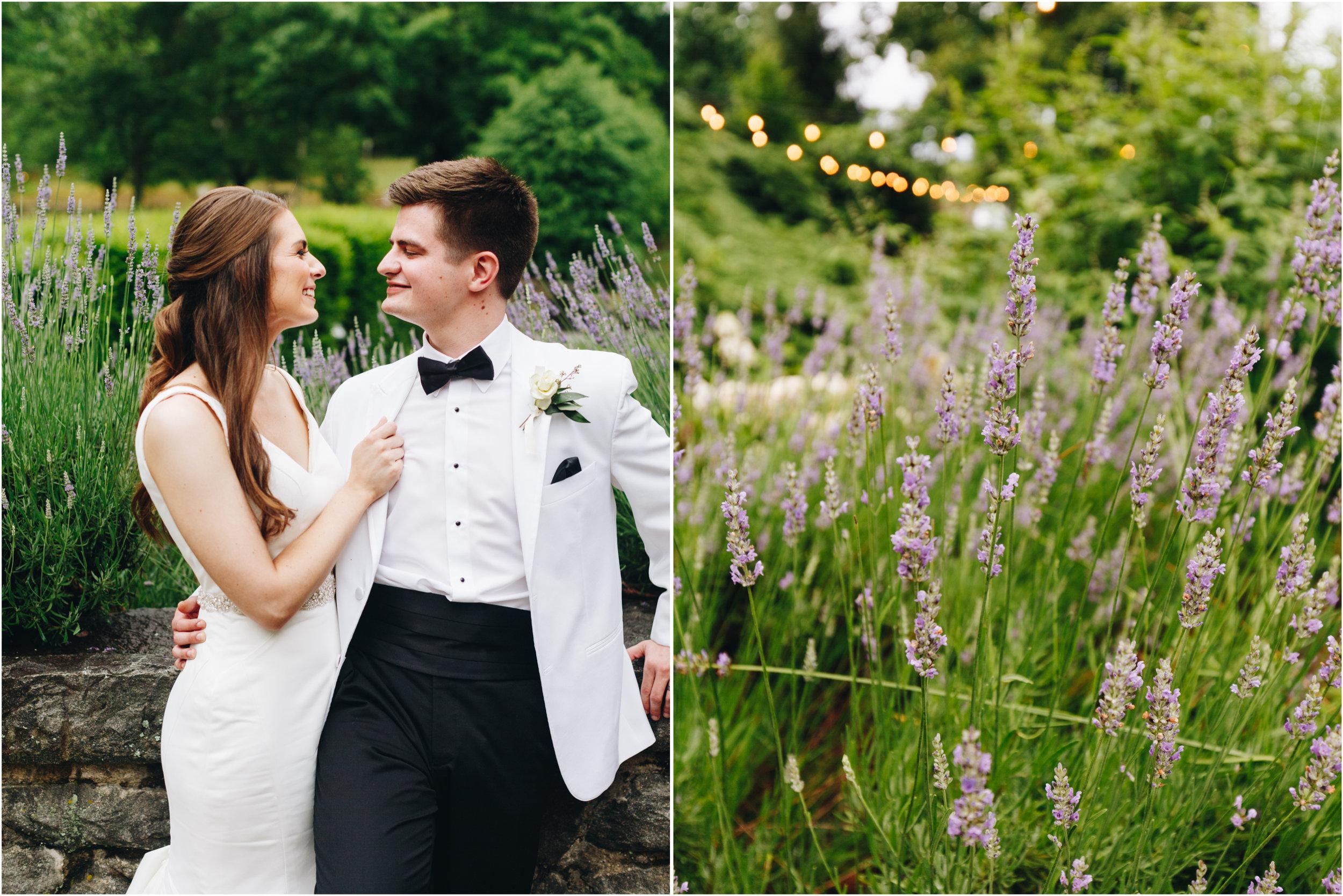 lavender wedding portraits