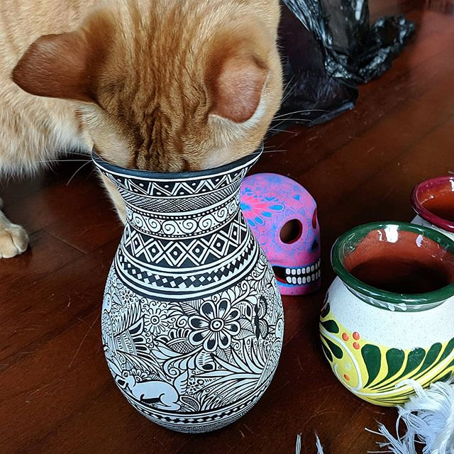 Little Man likes our #ceramics almost as much as we do! A lady was hand painting these at the market in Tepoztlan 🌈☯️💜 . . . #catsofinstagram #artface #catface