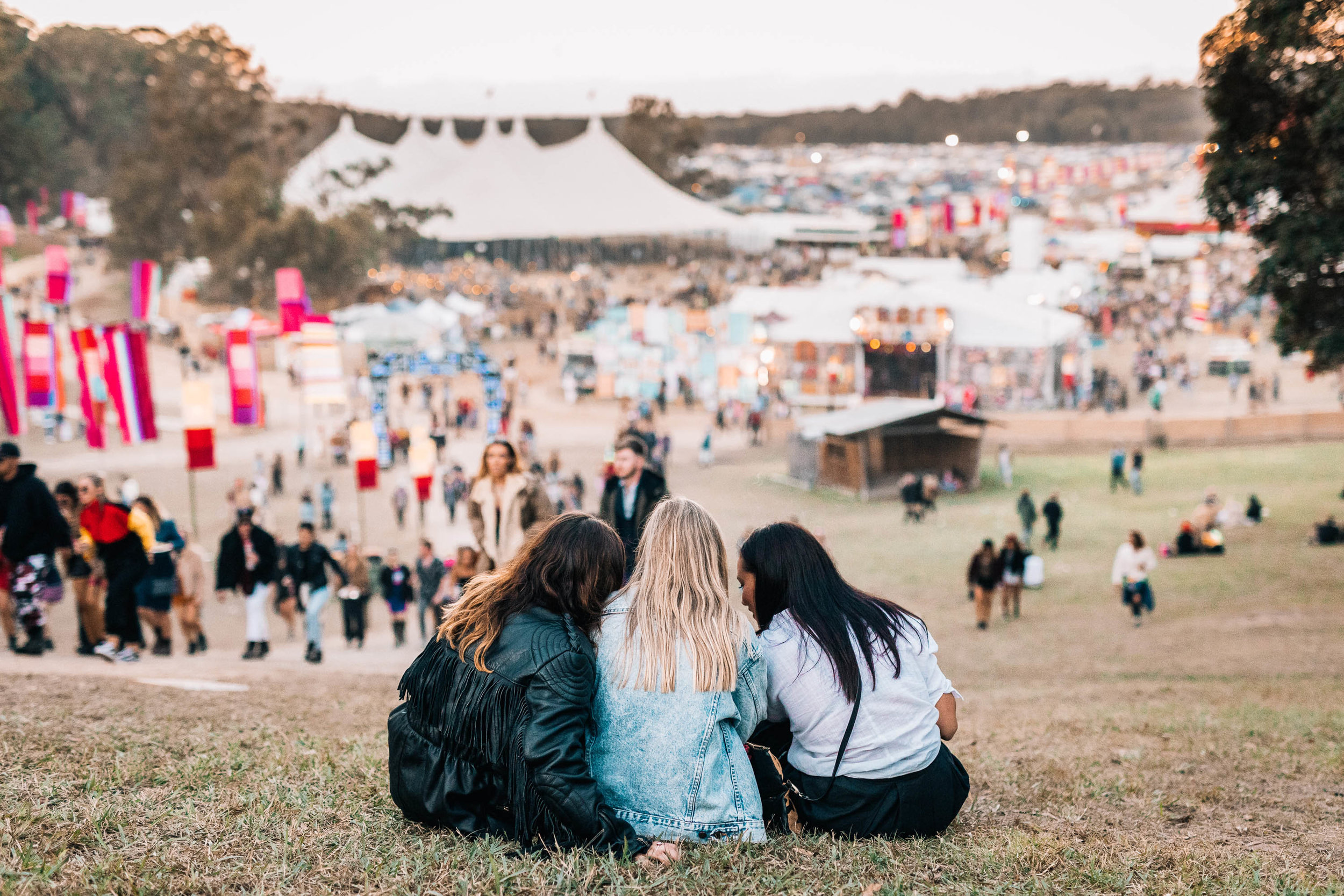 SPLENDOUR IN THE GRASS -