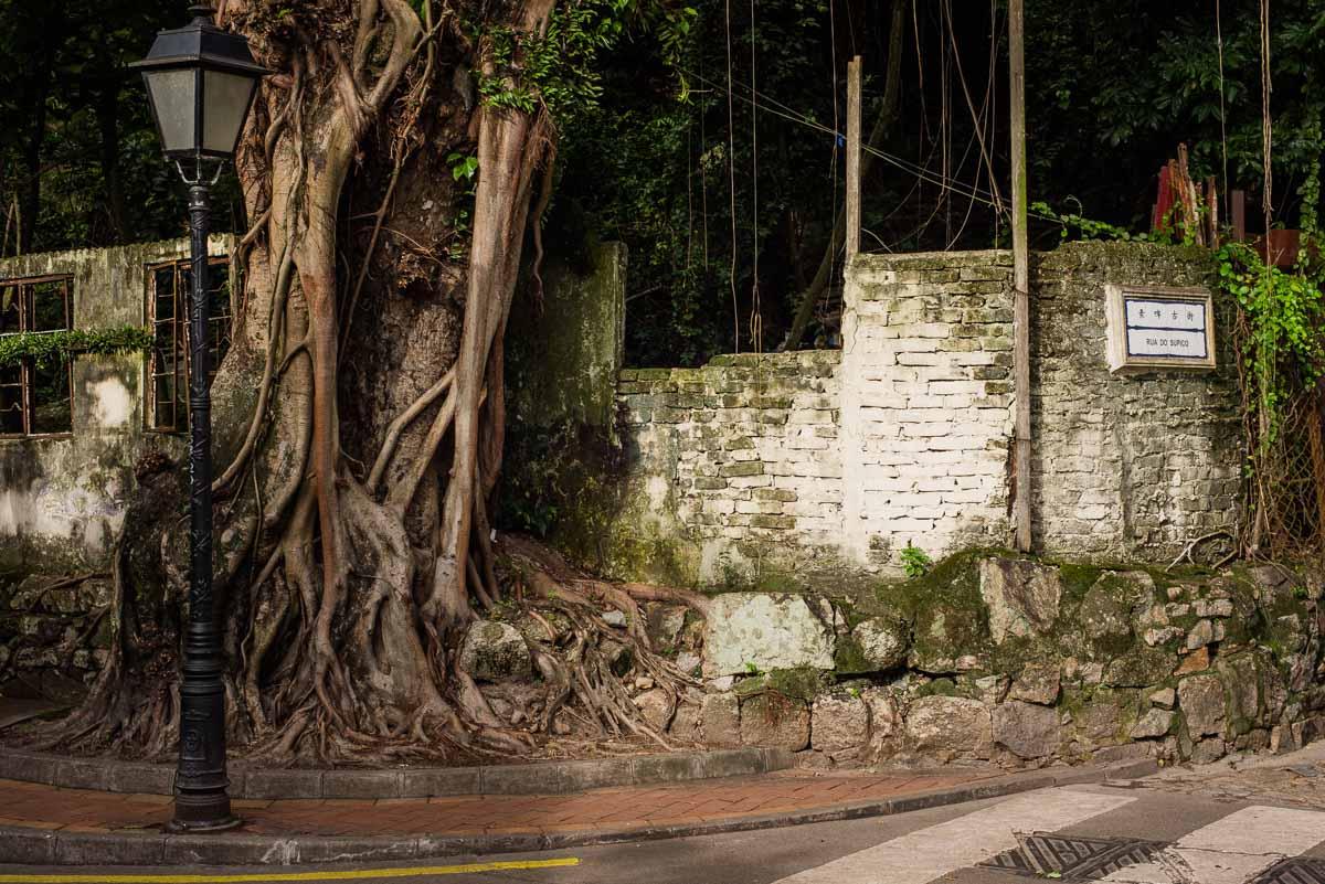 Macau-121.jpg