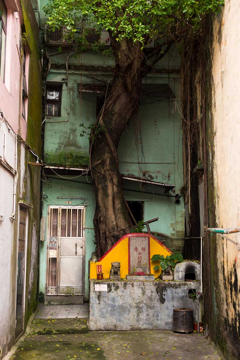 Macau-172.jpg