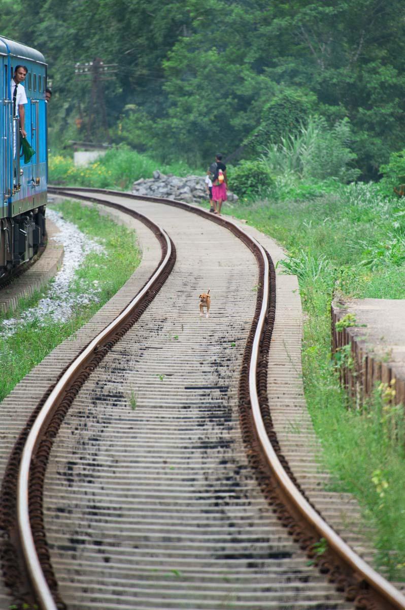 Sri Lanka-10.jpg