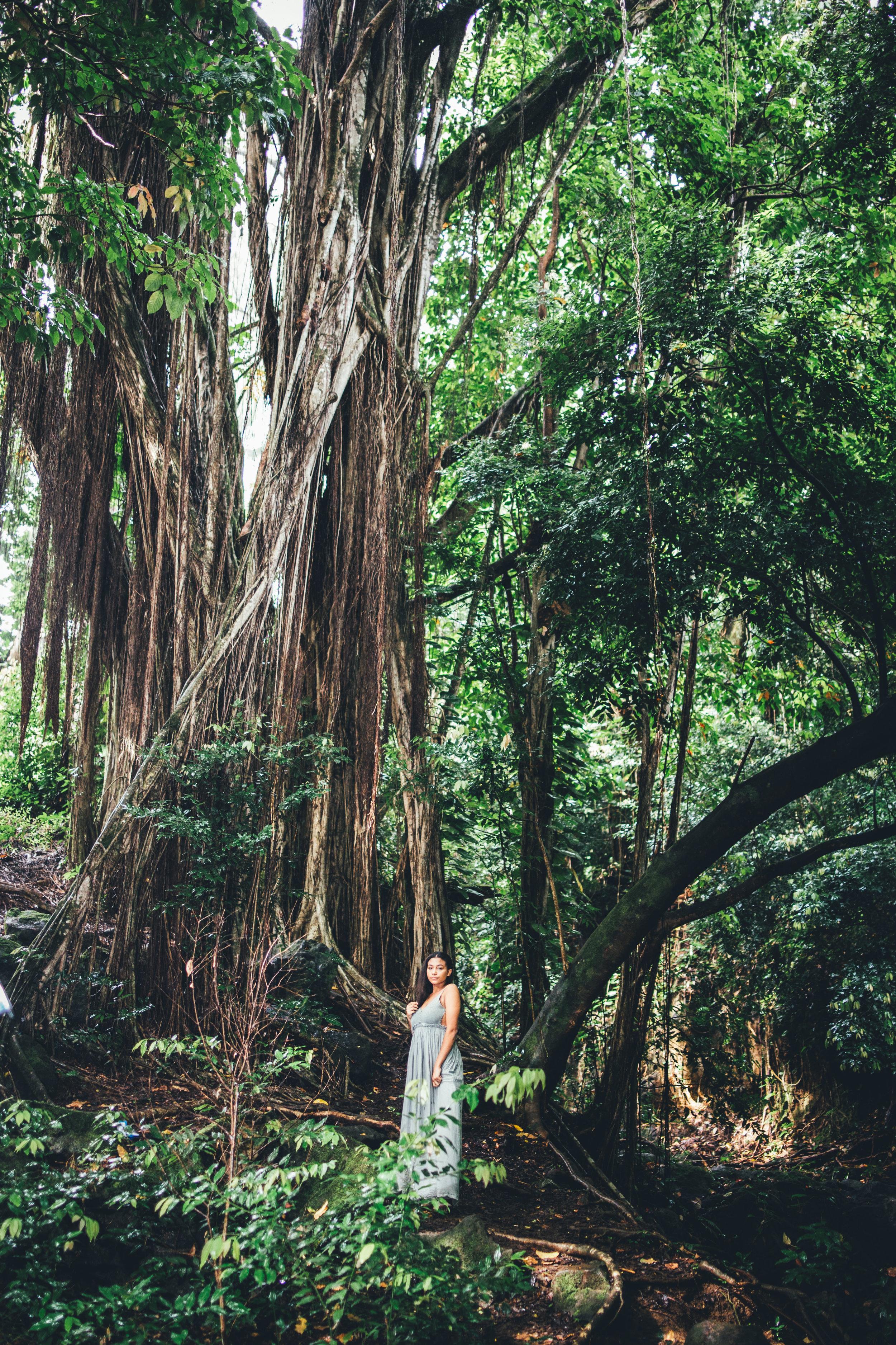 KirraRaina-Jungle-INSTA-3.jpg