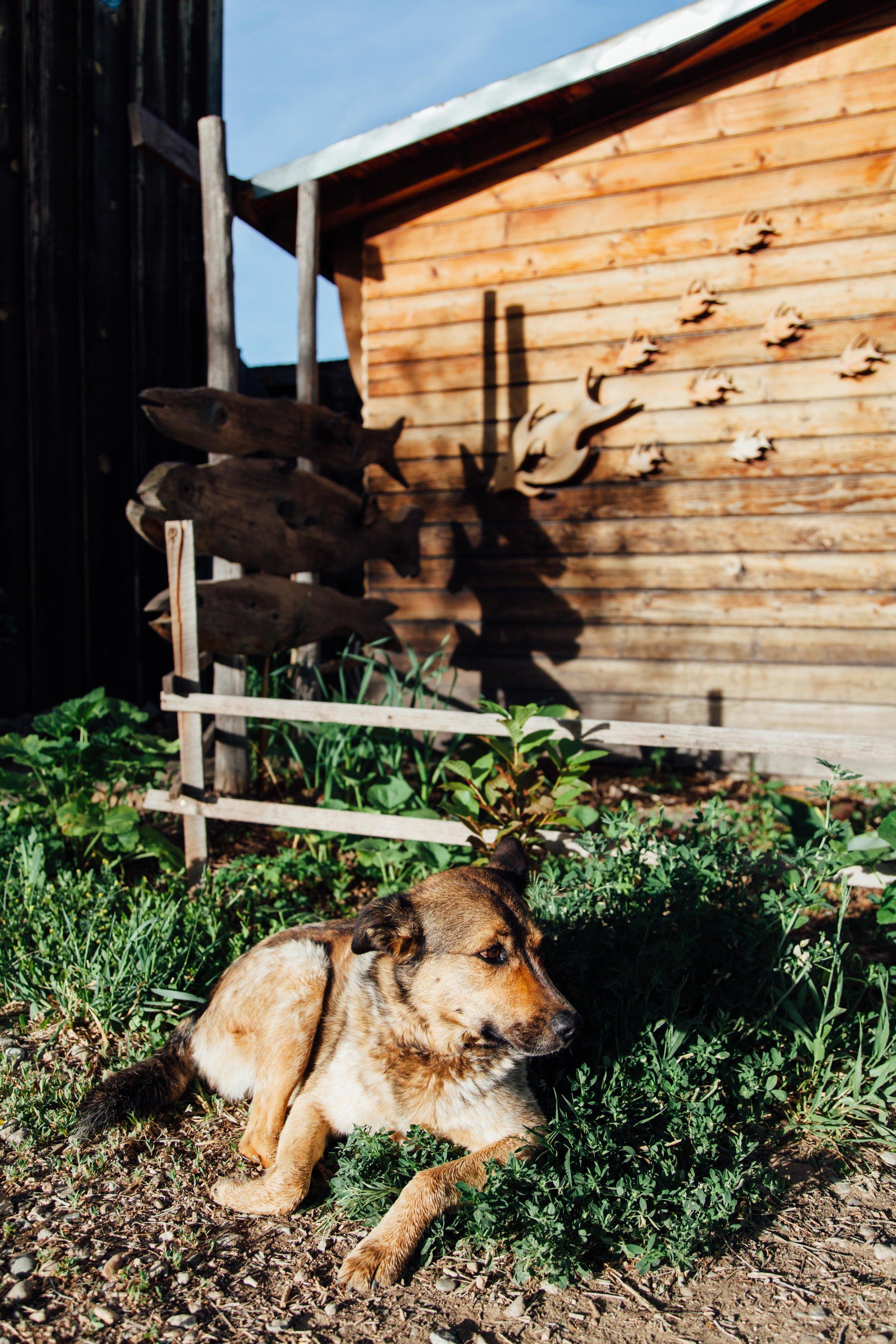 Taos_Emily_14.jpg