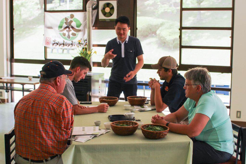 Tea-Tour-Page-5-1024x683.jpg
