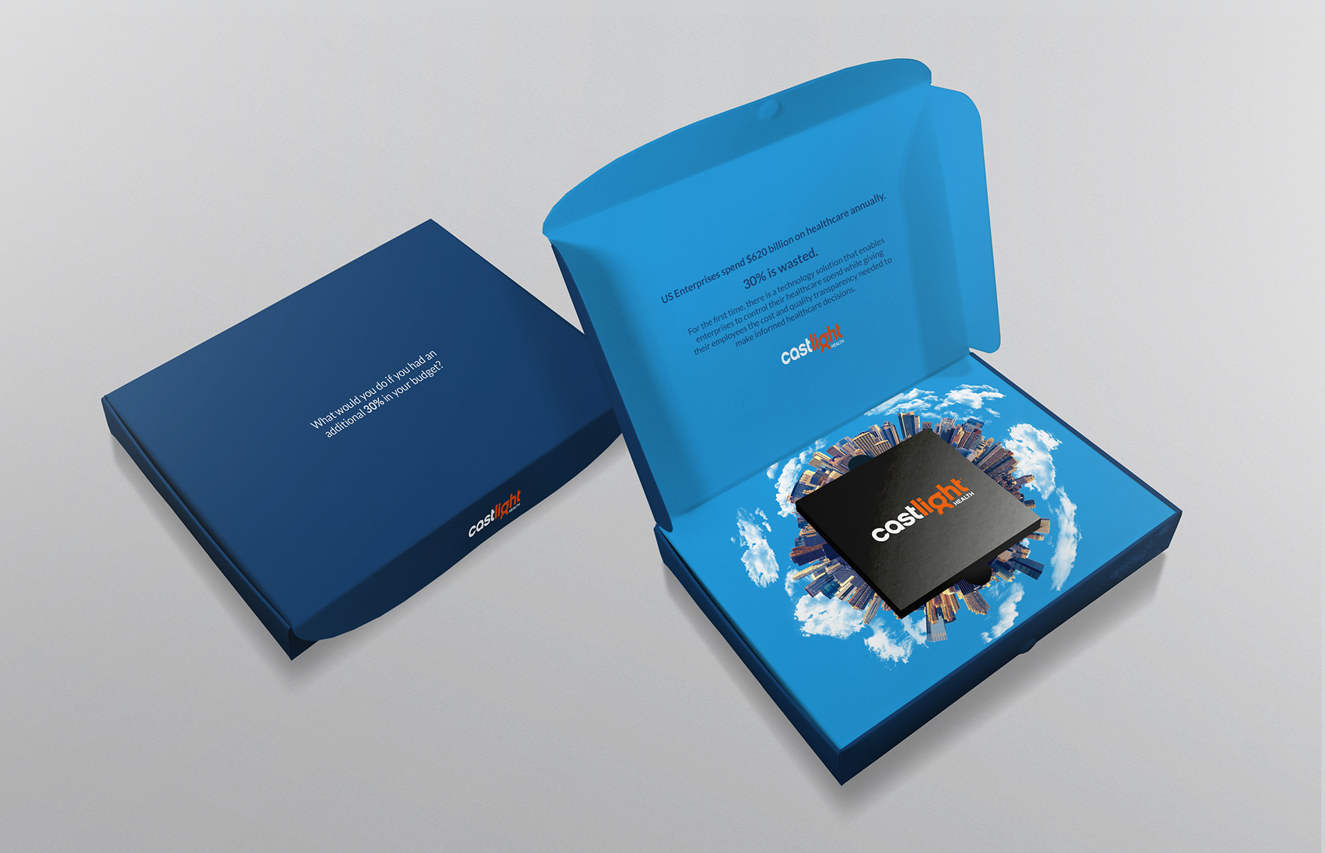 Castlight Health: Targeted Direct Mail