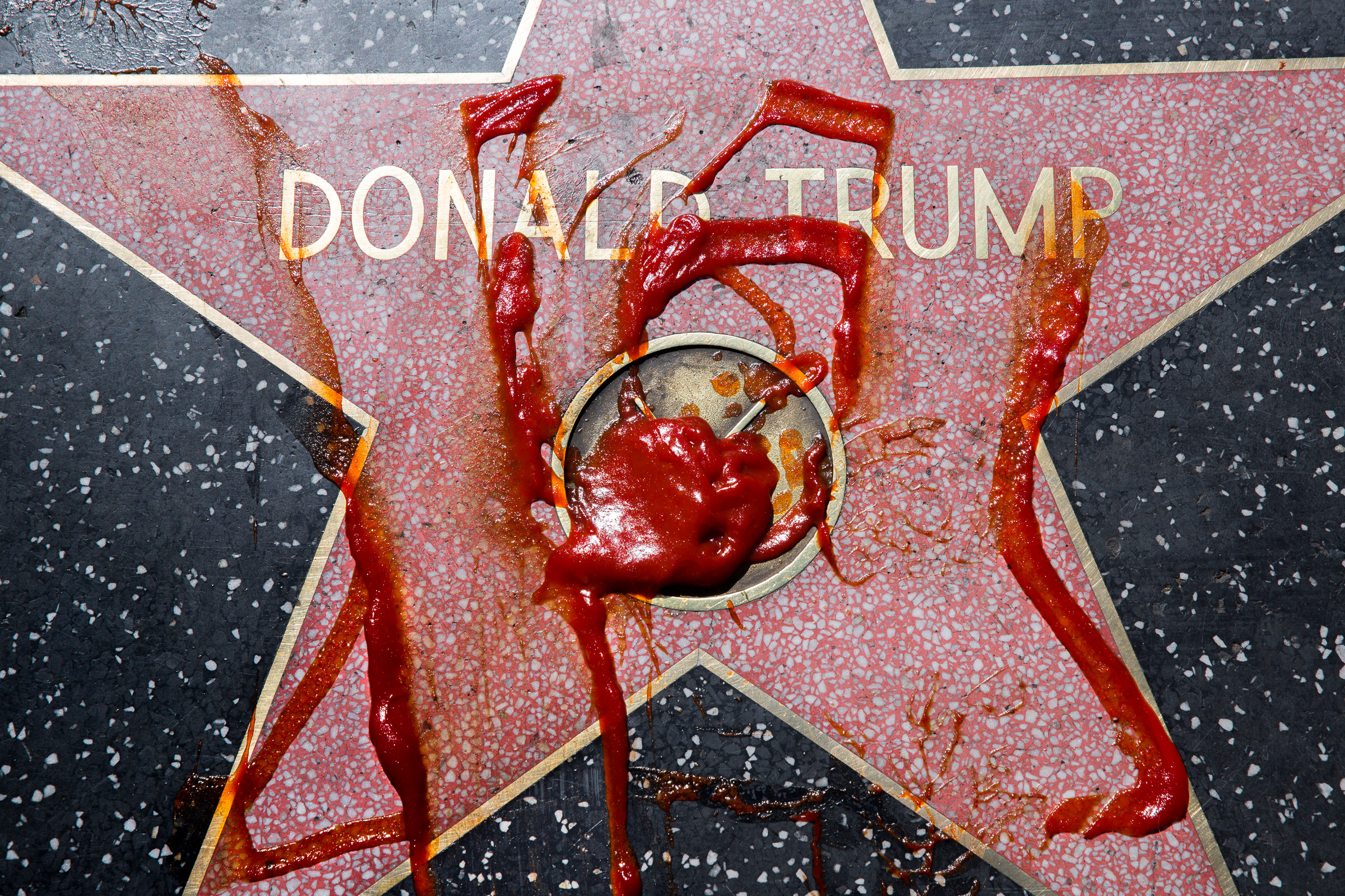 Donald_Trump_Book-digital-1.jpg