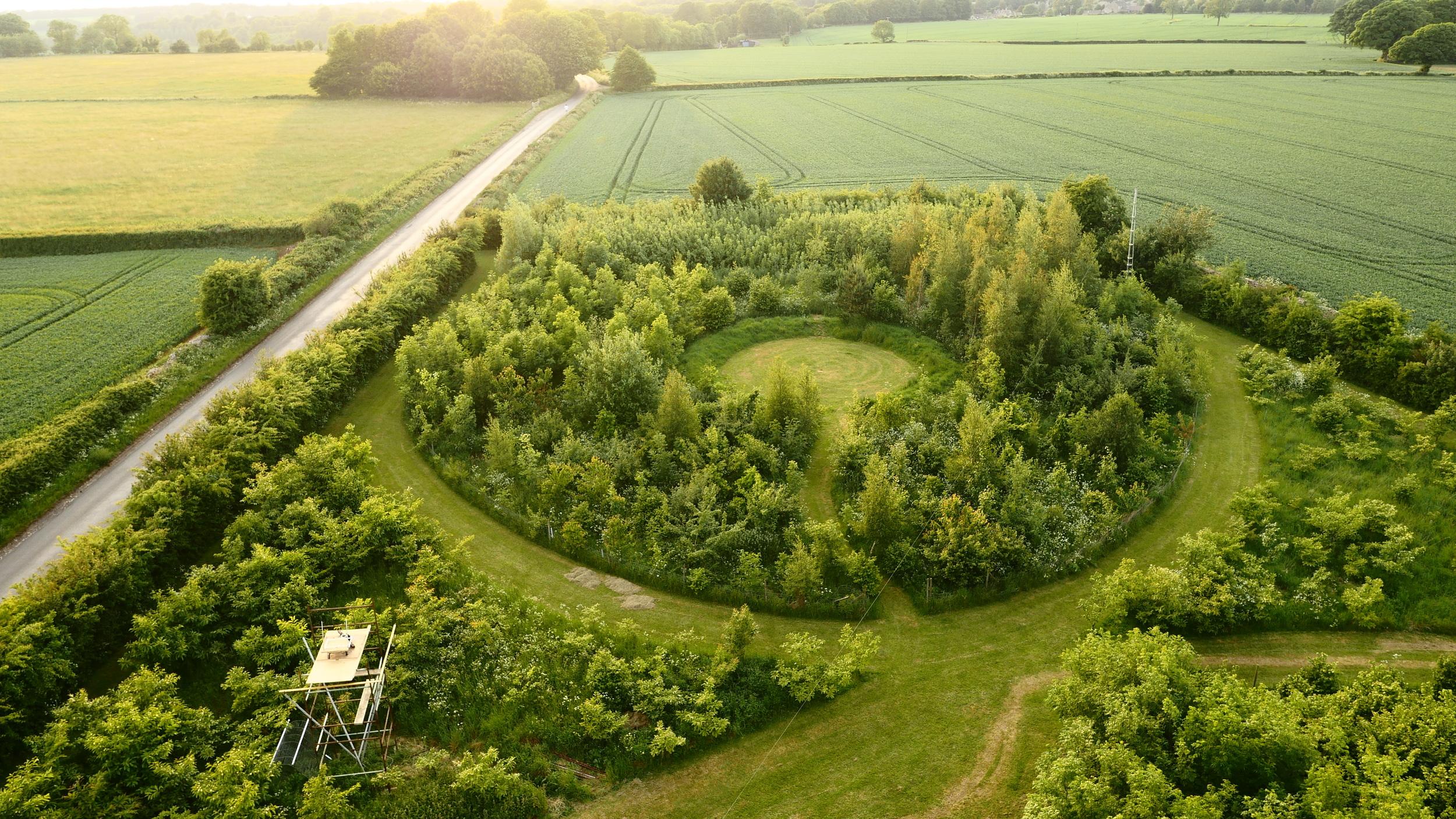 Hal's Farm