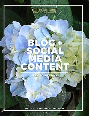 Media-Content-thumb-web.jpg