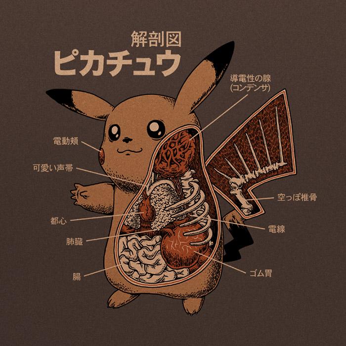 Pikachu-Anatomy_preview.jpg