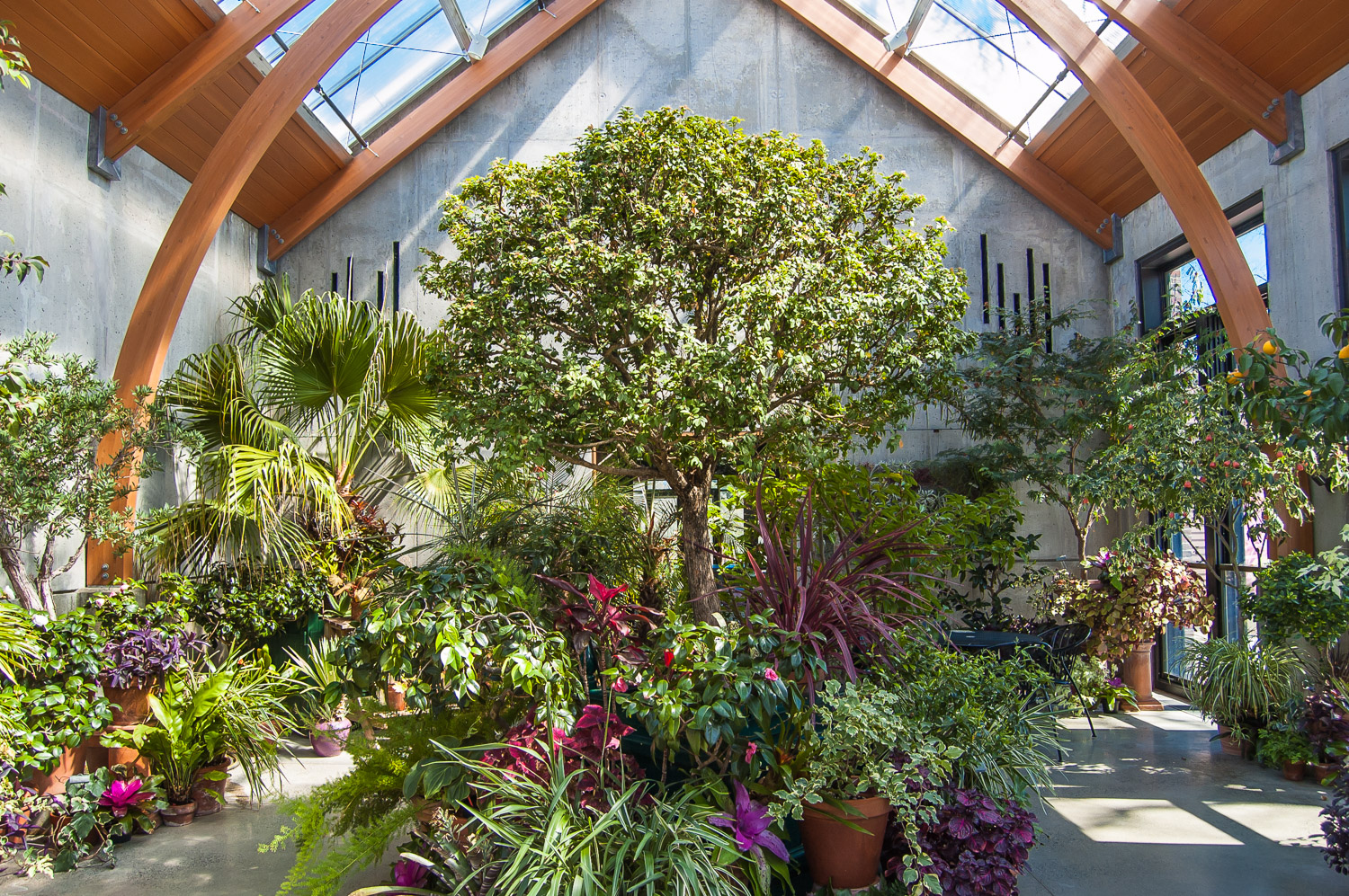 The Limonaia, Tower Hill Botanic Garden
