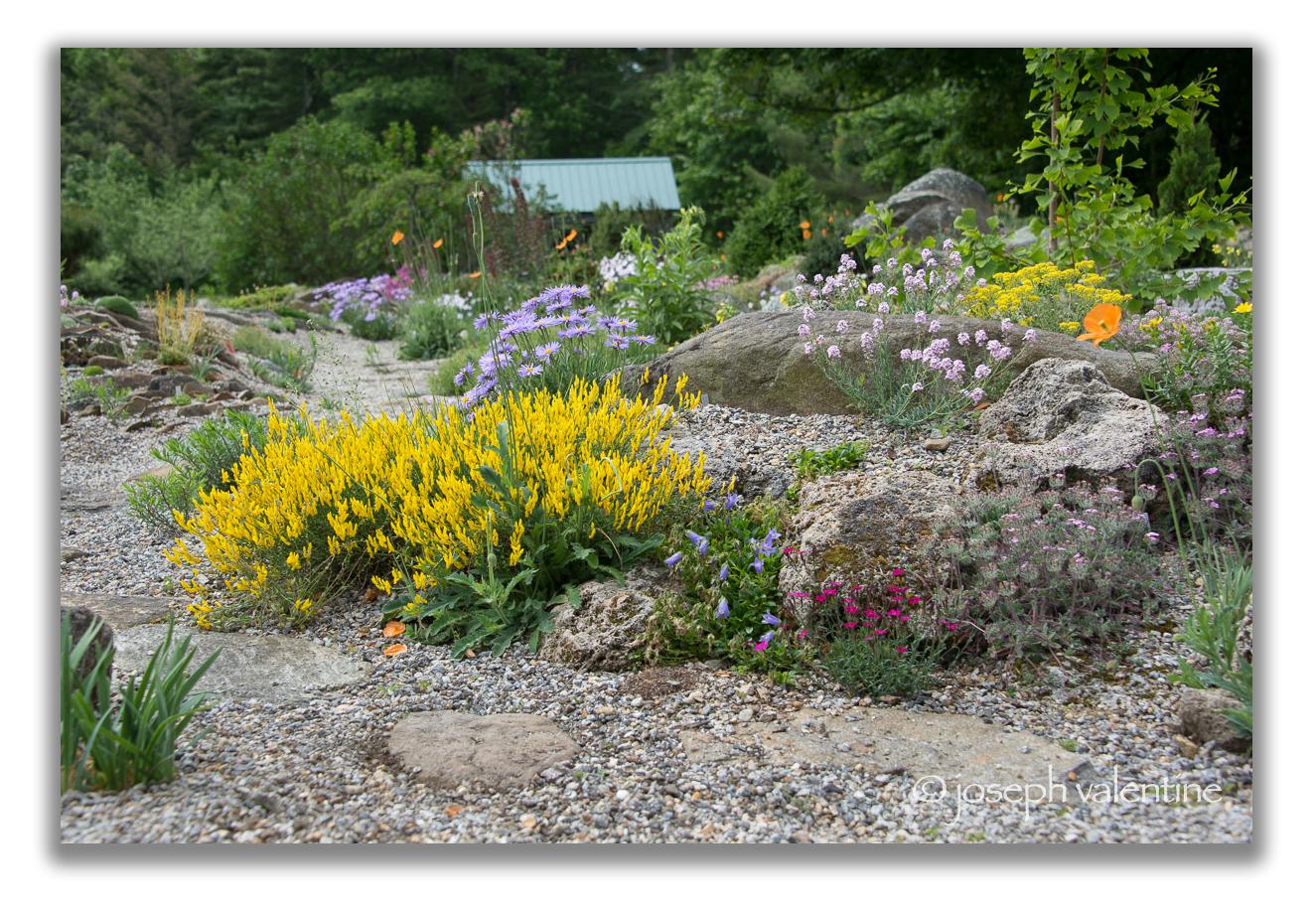 The rock garden at Bruce Lockhart's Swift River Farm in Petersham, Massachusetts.