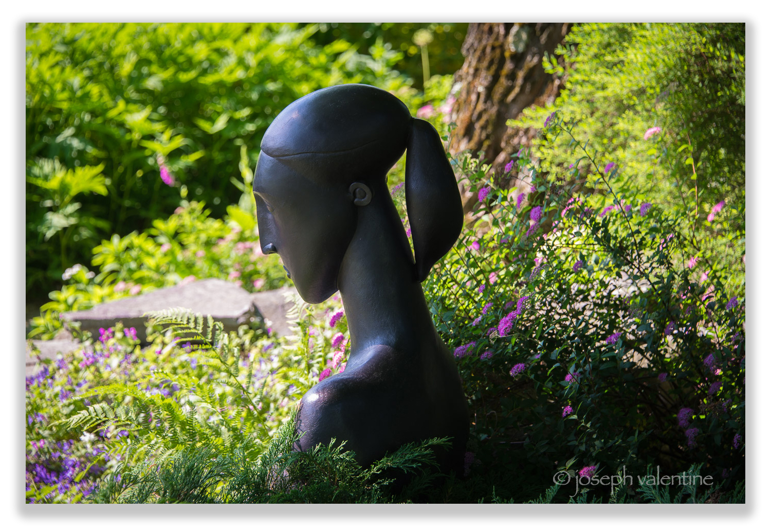 This sleek and sophisticated lady seems to emerge from the plantings in Gordon and Mary Hayward's Vermont garden.