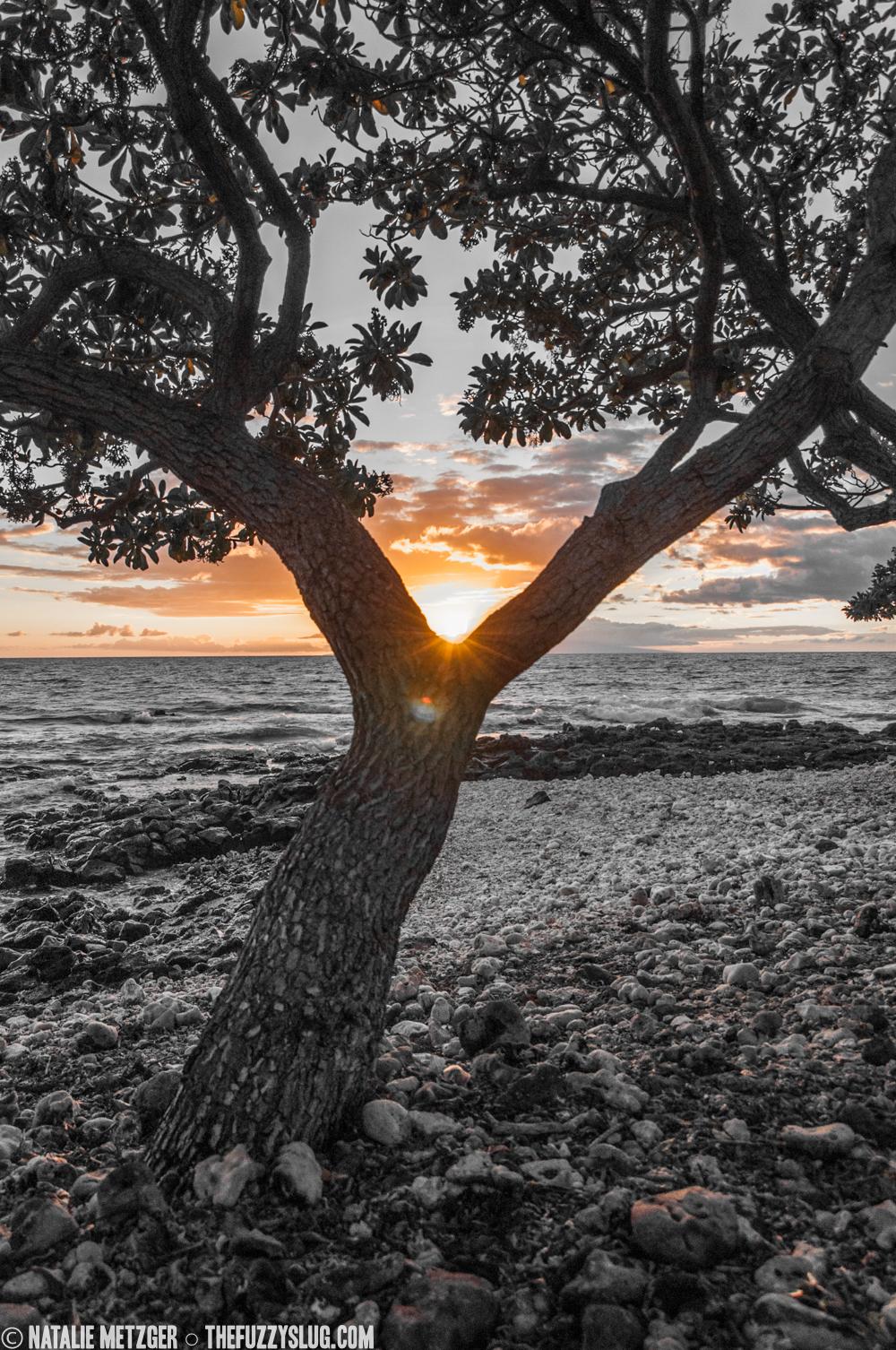 Sunset at Wailea  Maui, Hawaii