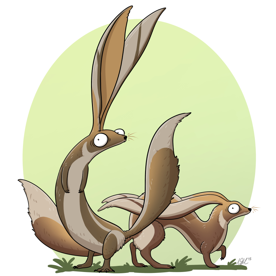 6-shepherd-hare.jpg