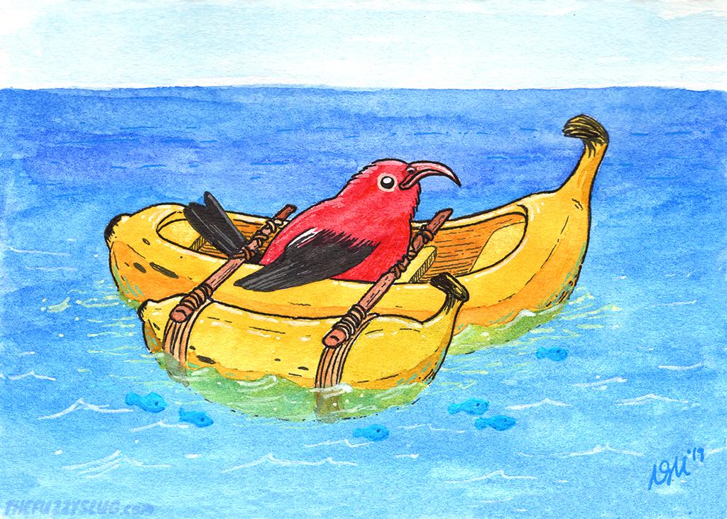 Banana Boat I'iwi