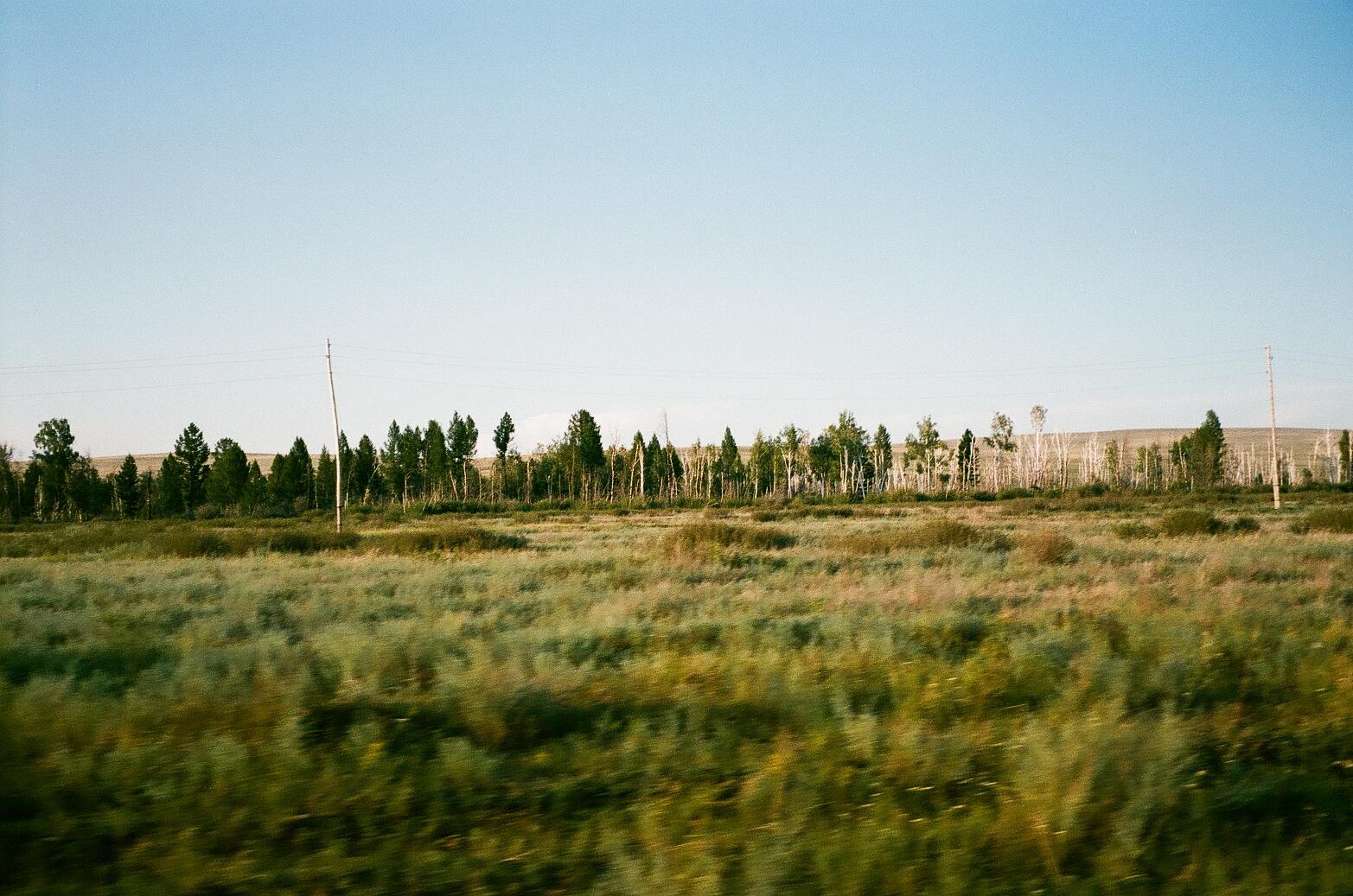020_tuva (1).jpg