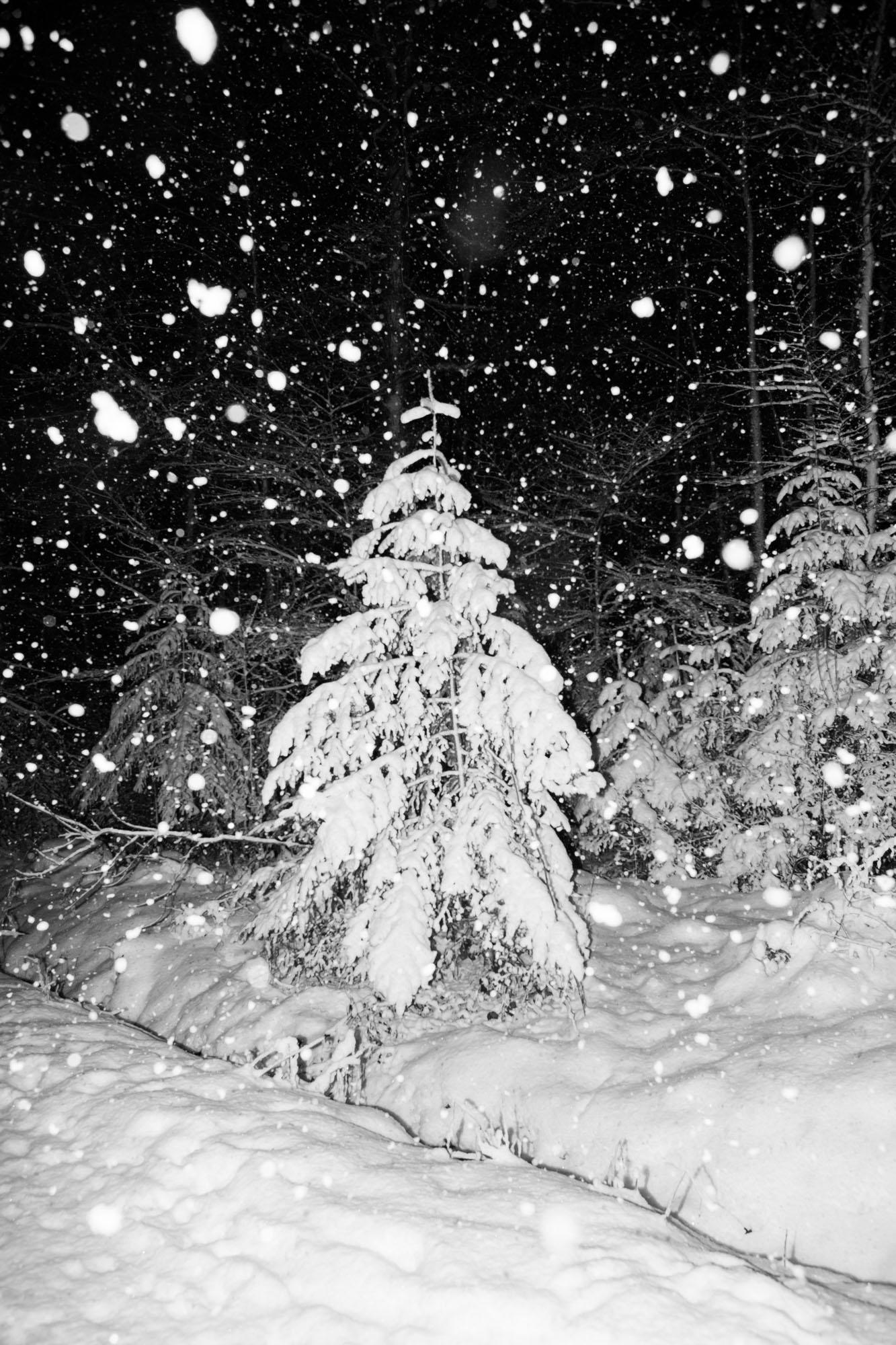 nouveau-monde-fribourg-suisse-photographe-pierre-yves-massot-4.jpg
