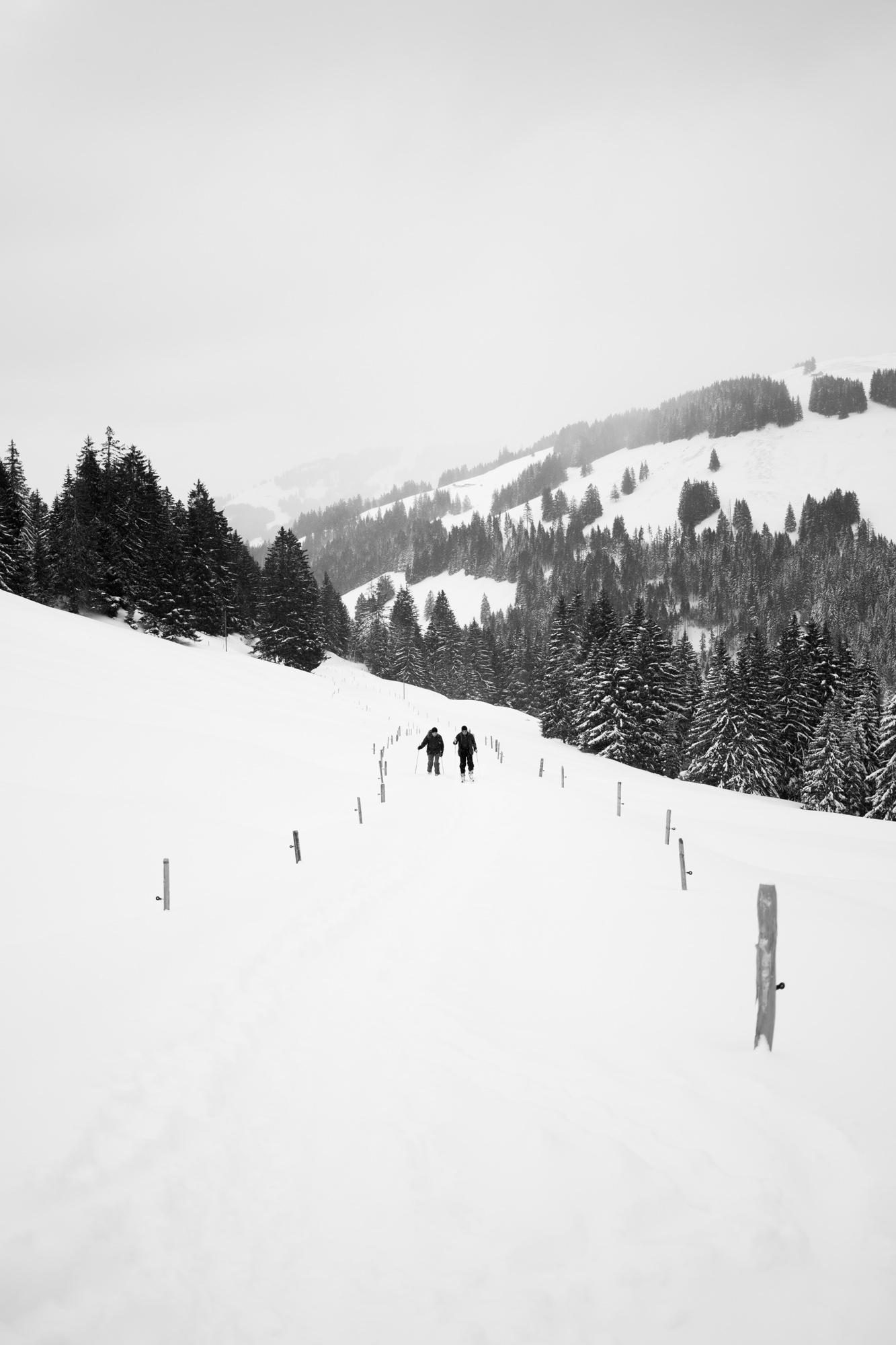 nouveau-monde-fribourg-suisse-photographe-pierre-yves-massot-6.jpg