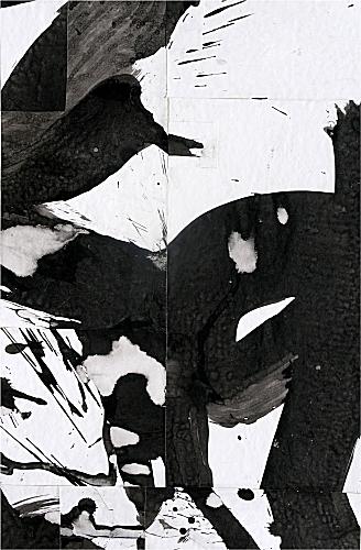 fs2475ct07-a 2009 9 x 6.jpg