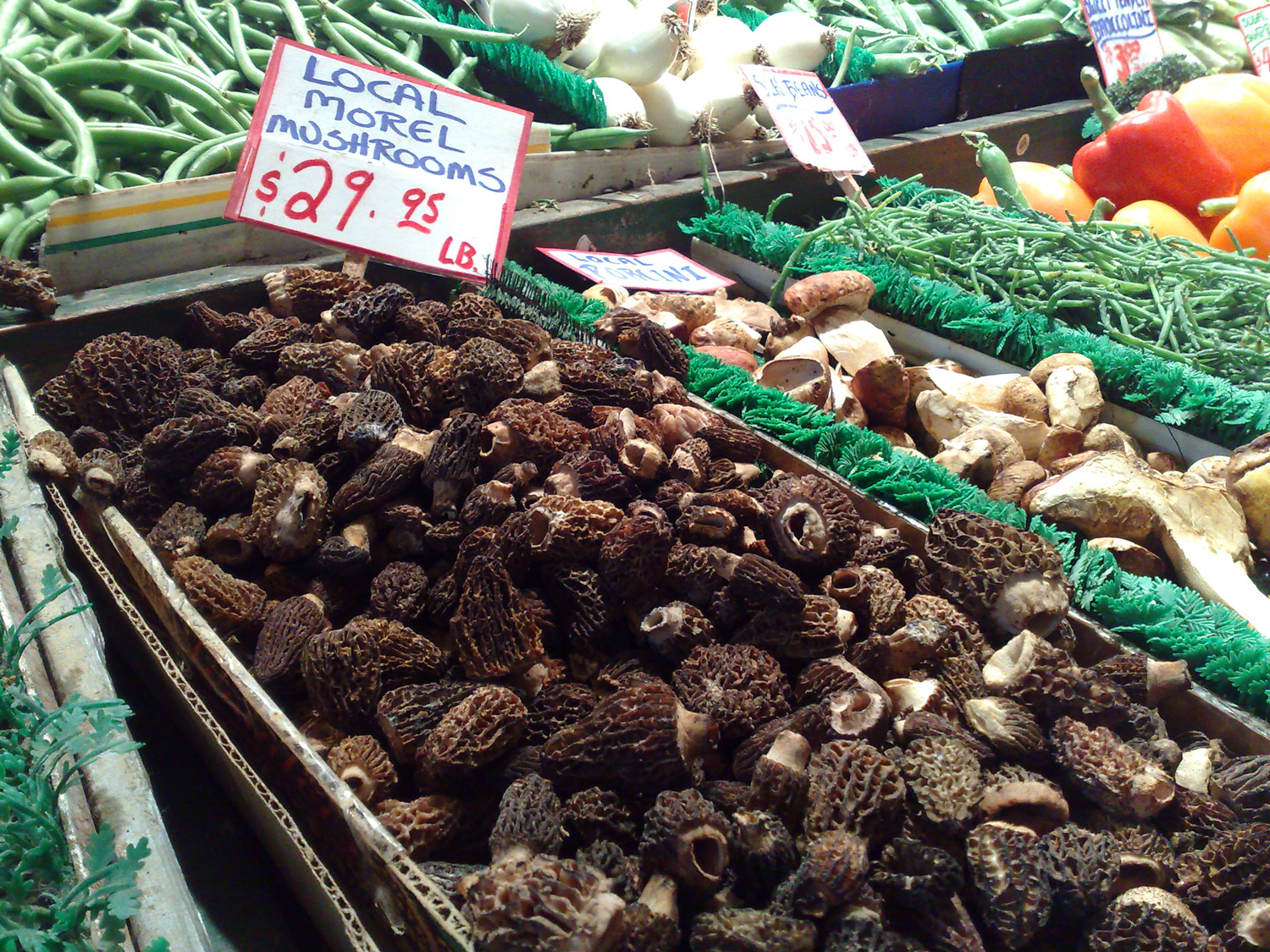 2015-03-11_pike-place-morels.jpg