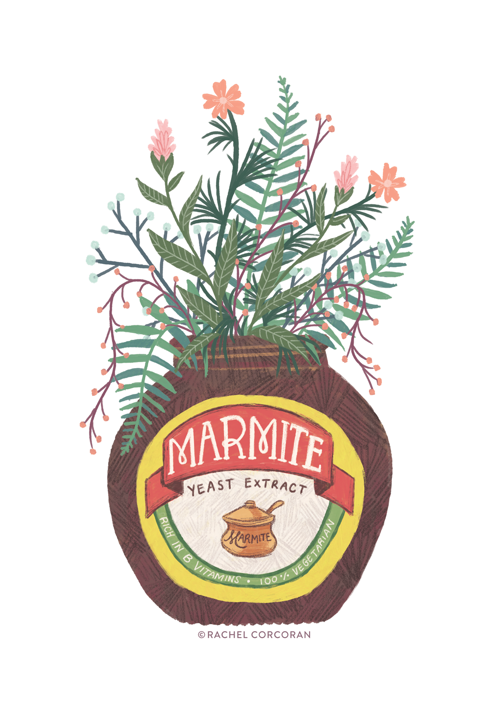 Wildflower marmite illustration by Rachel Corcoran