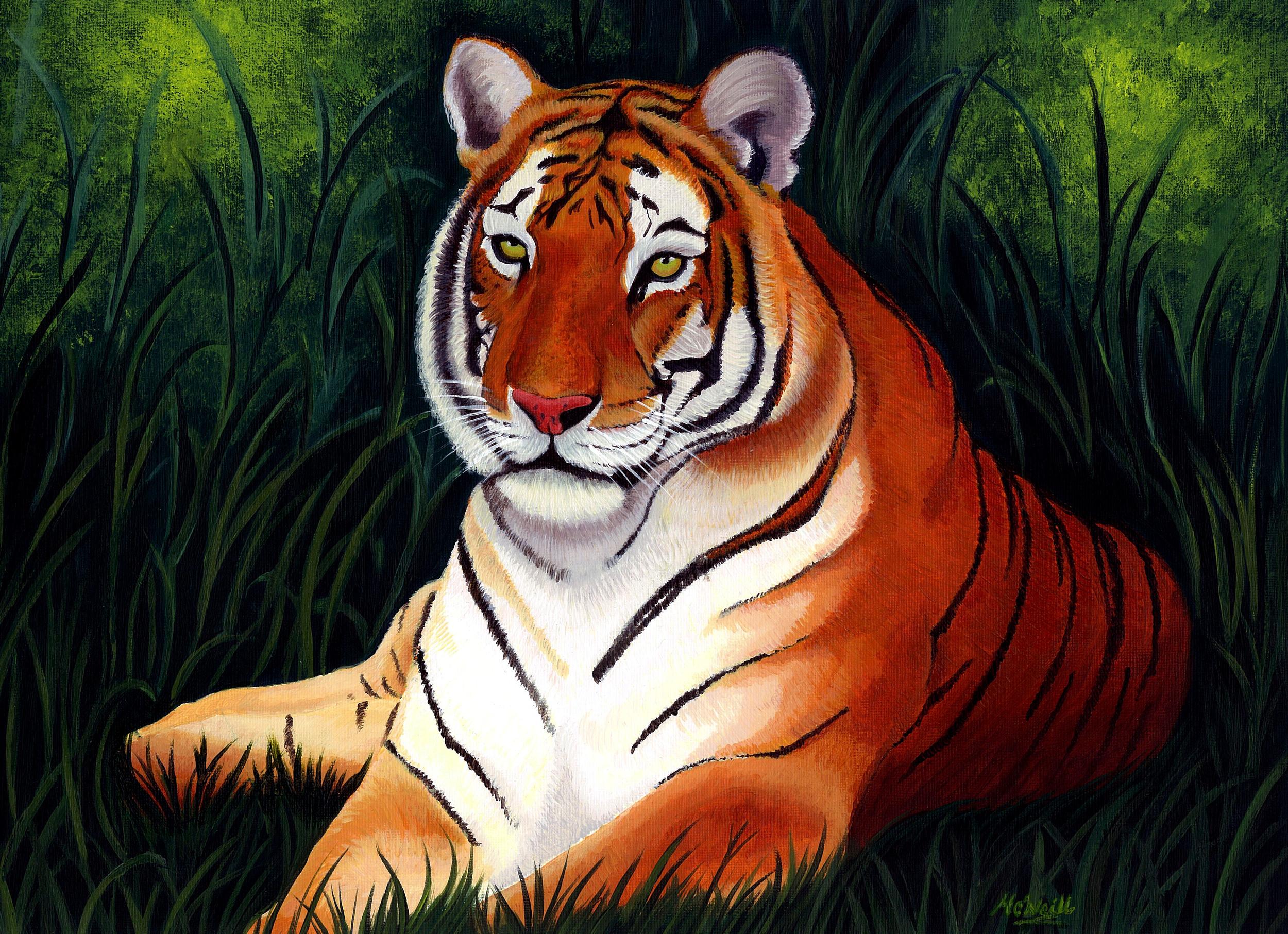 Tiger Scan2.jpg