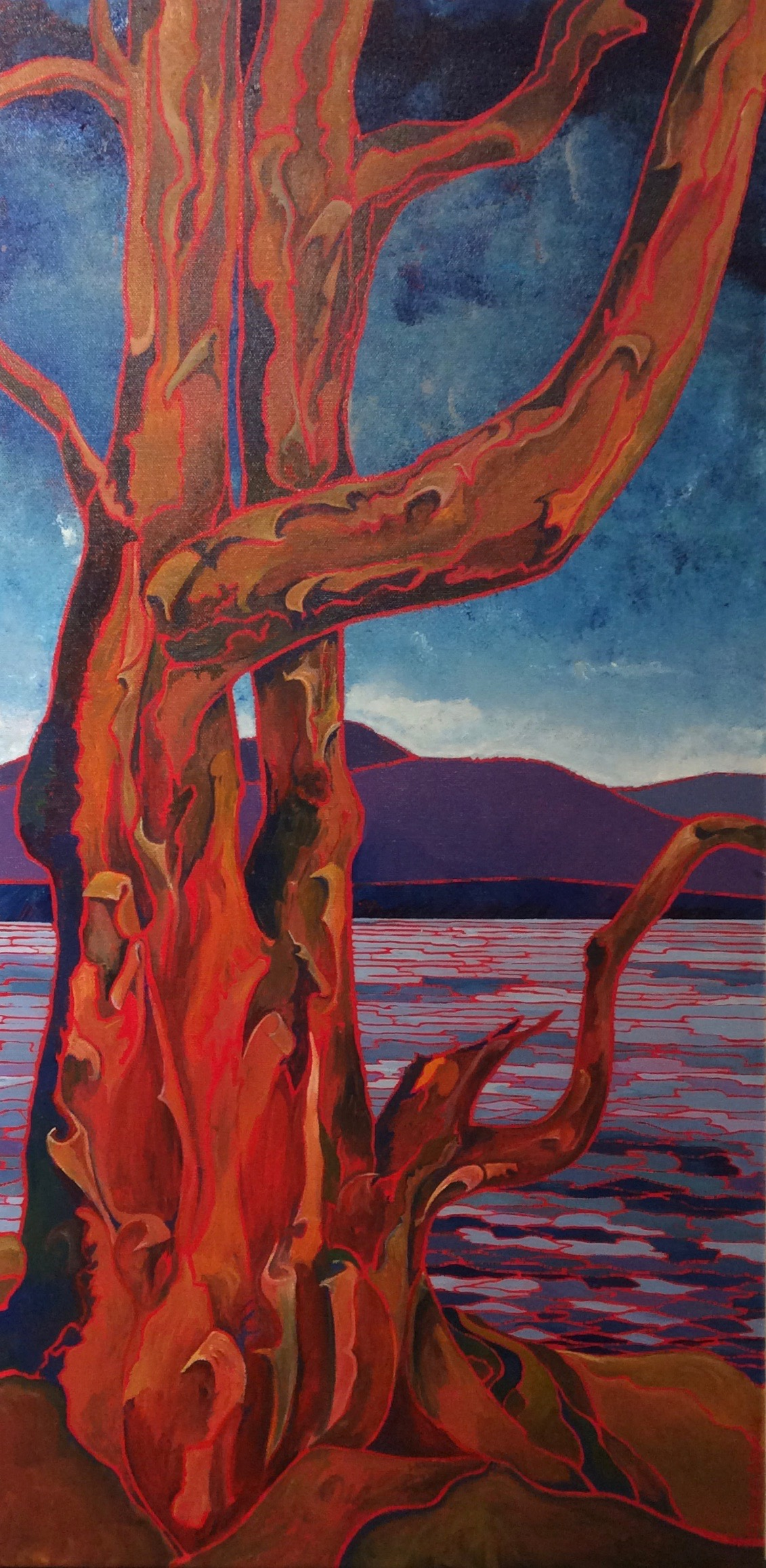 Arbutus Tree Madiera Park B.C.