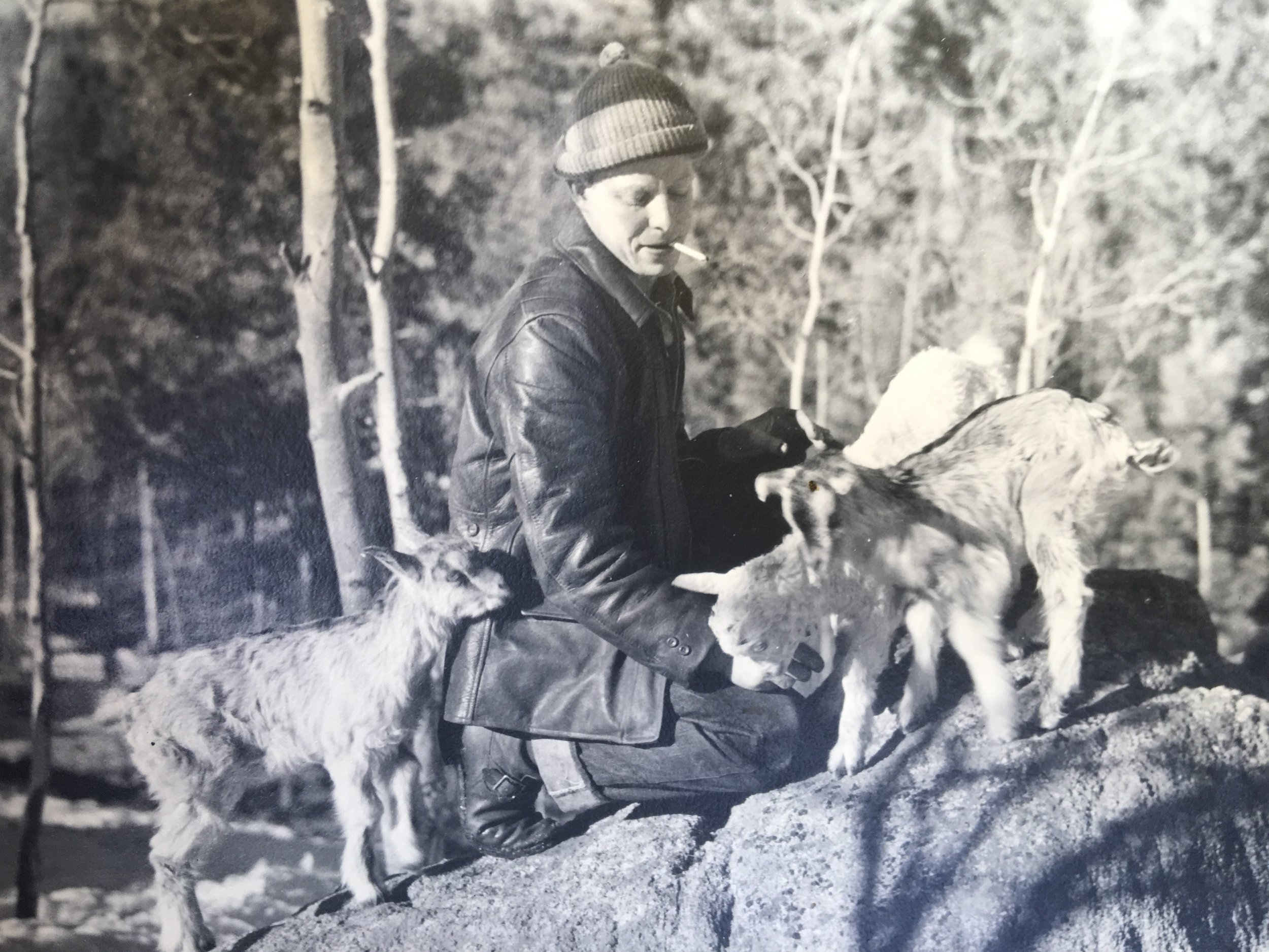 Otto Walter and his goats.