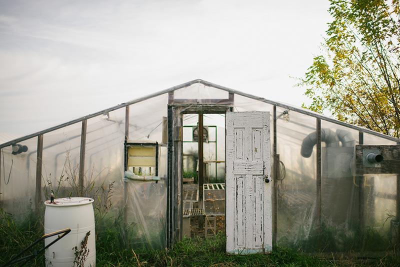 Foxtail Farm - Winter CSA