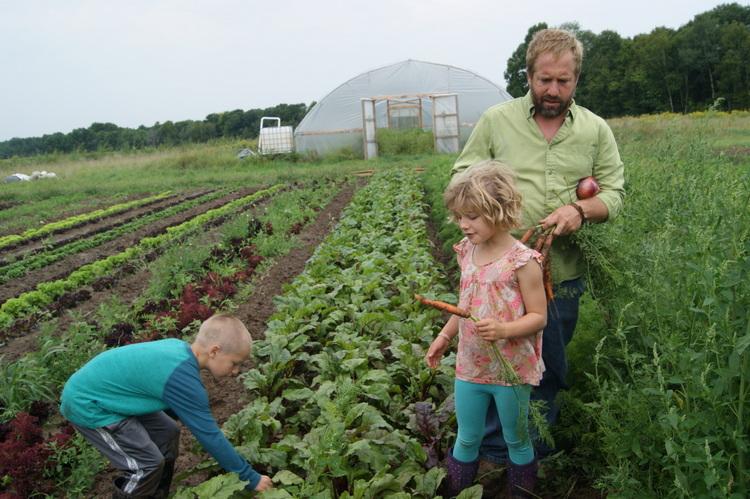 Steady Hand Farm 5.jpg
