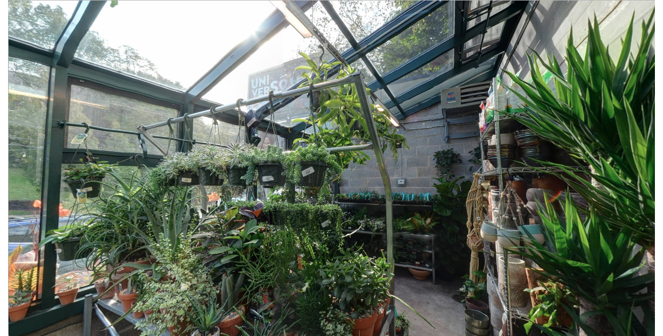Greenroom Inside.png