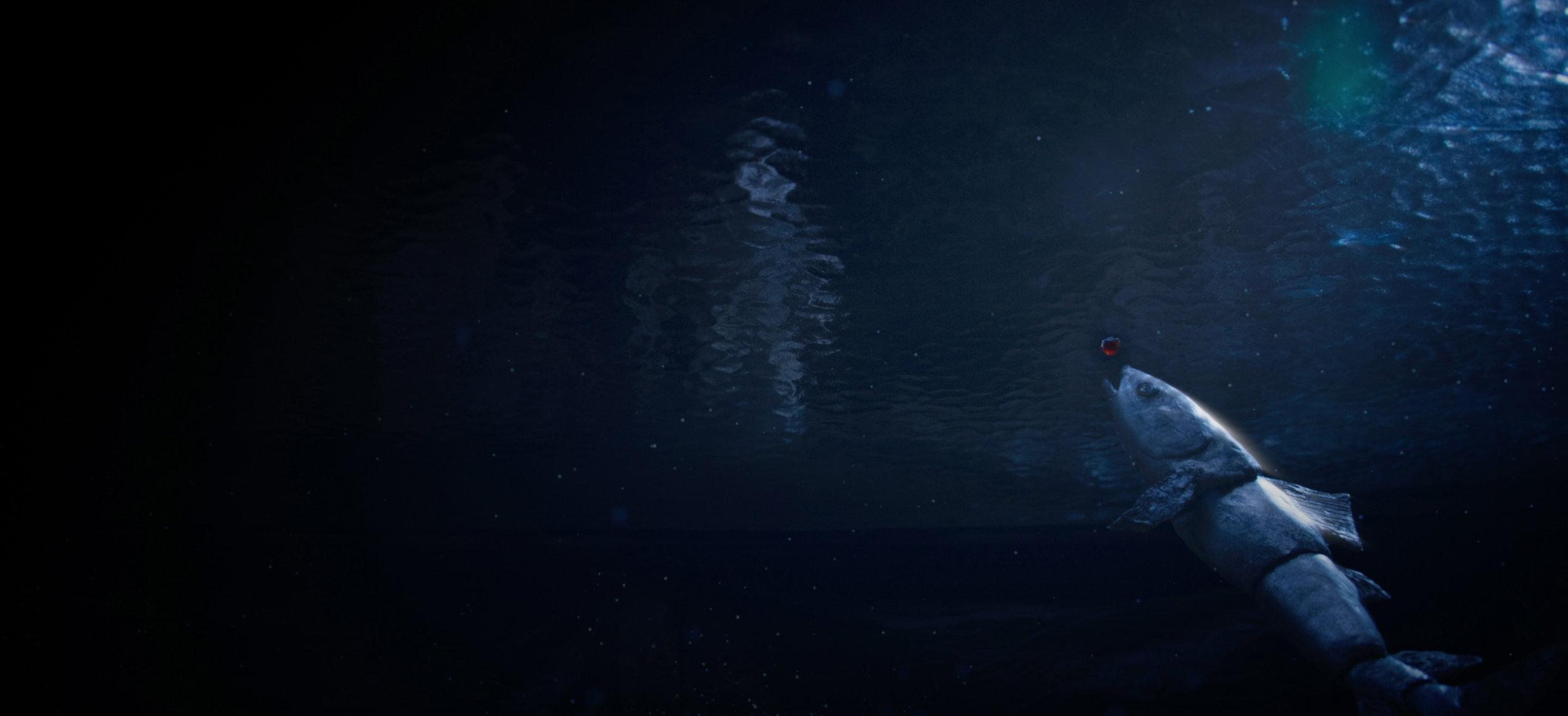 The Song of Wandering Aengus - Still 4.jpg