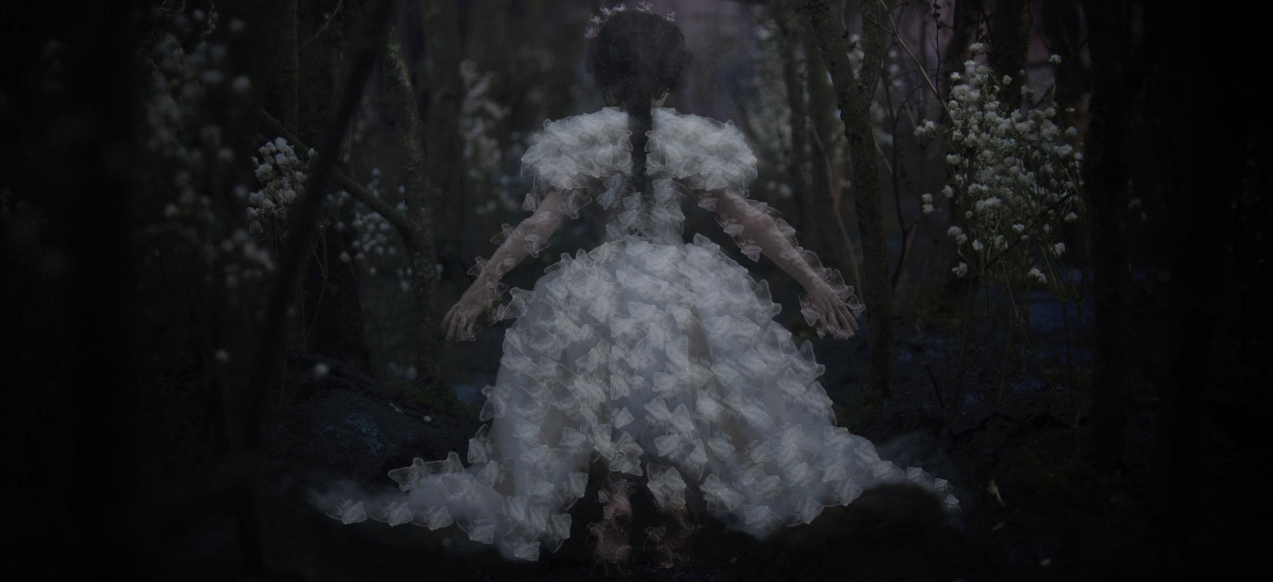The Song of Wandering Aengus - Still 8.jpg