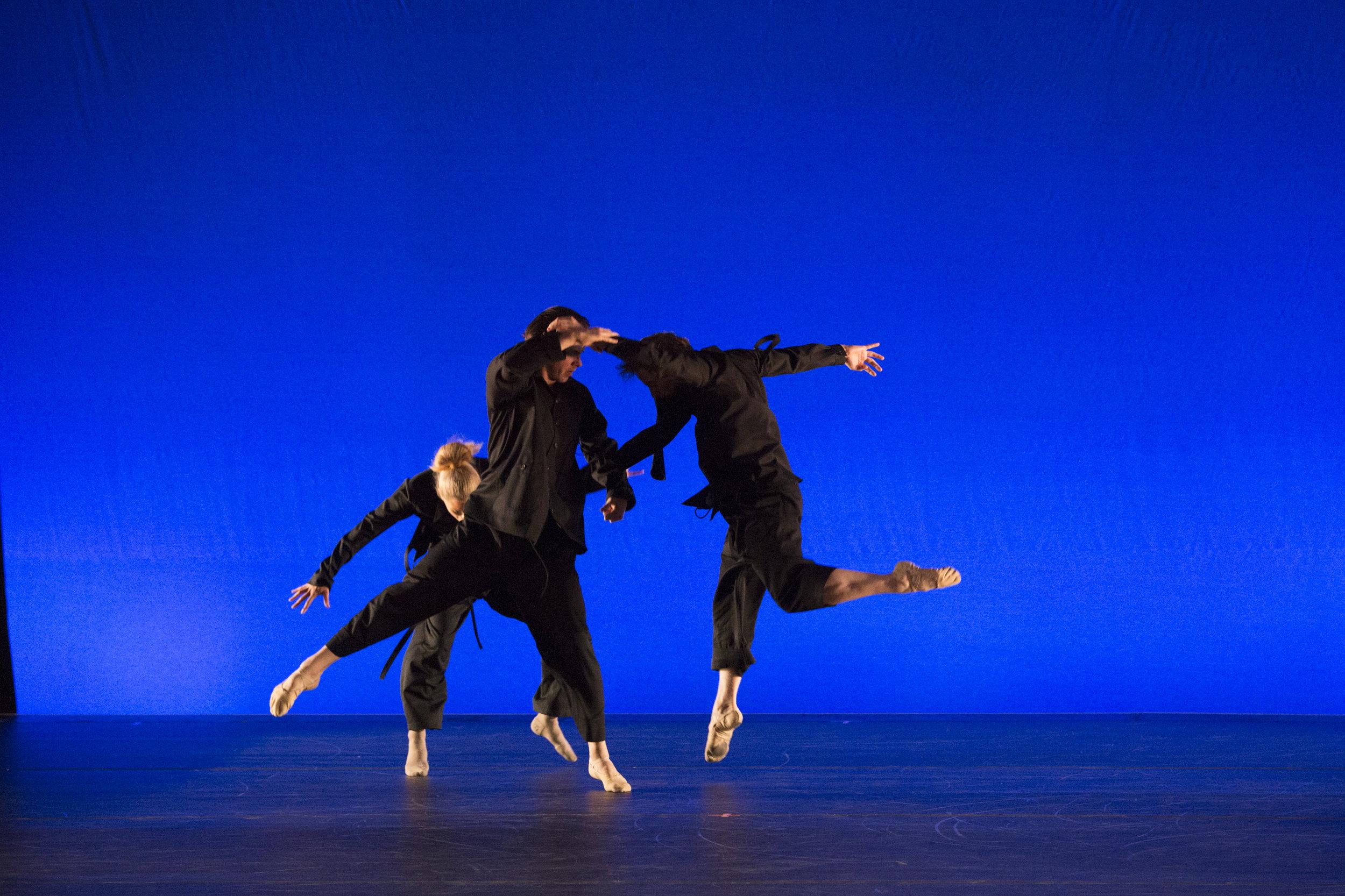 Cirio-Collective-Hudson-Valley-Dance-Festival-2017-photo by @franciscograciano-8362.jpg