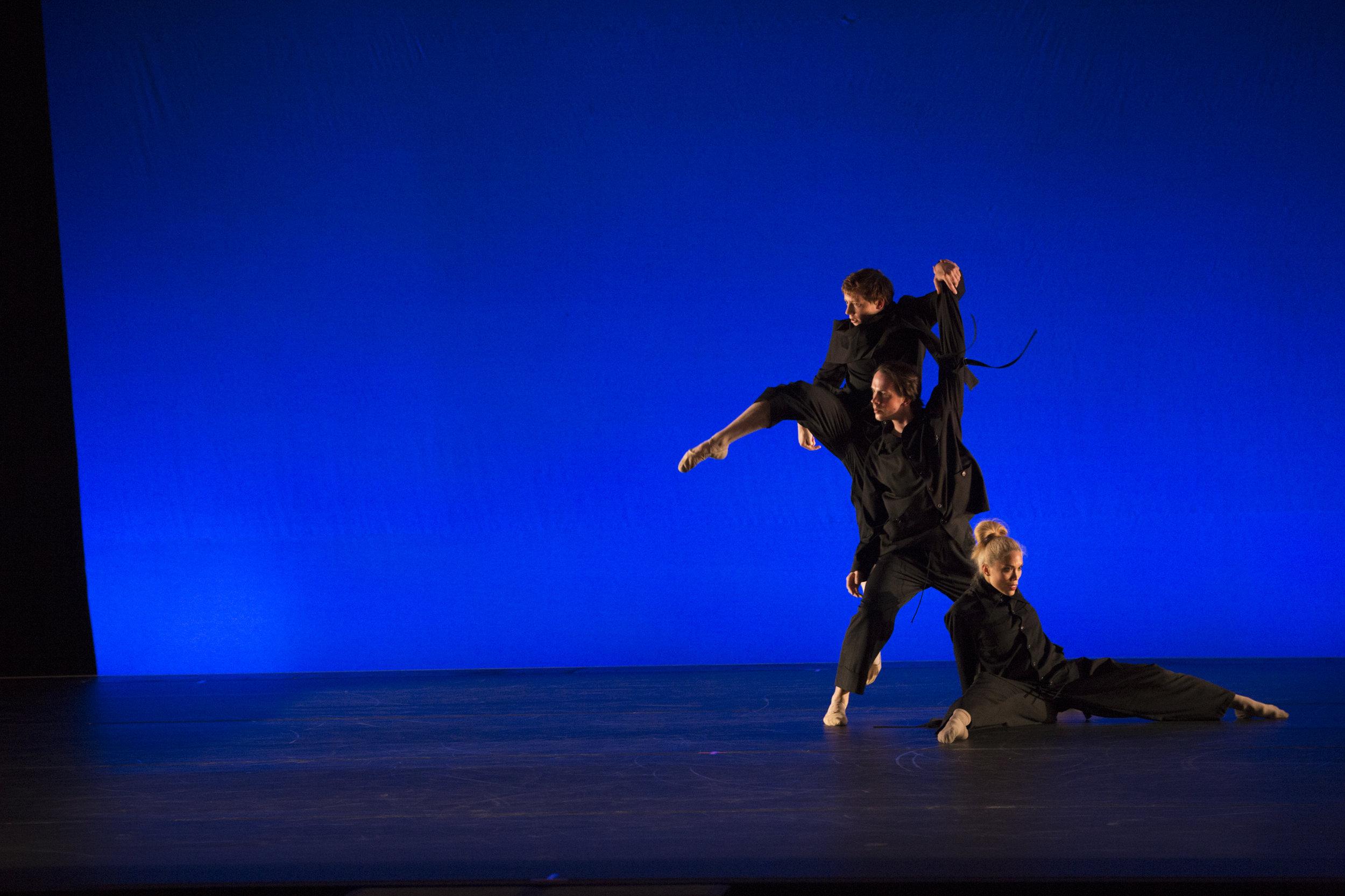 Cirio-Collective-Hudson-Valley-Dance-Festival-2017-photo by @franciscograciano-8468.jpg