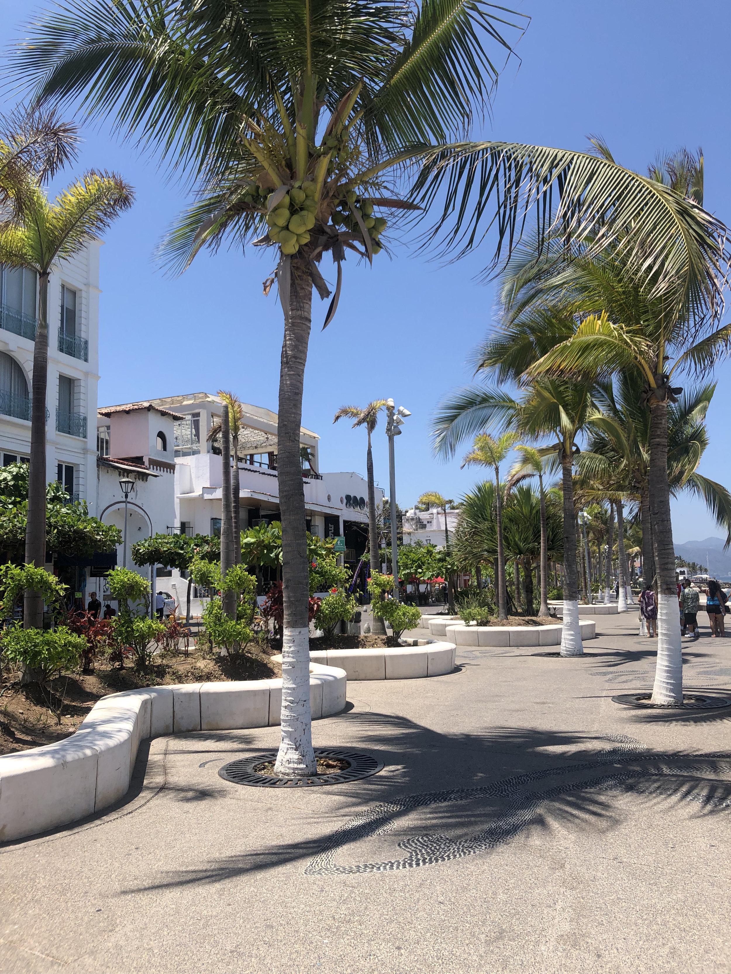 Photo: Malecon Puerto Vallarta